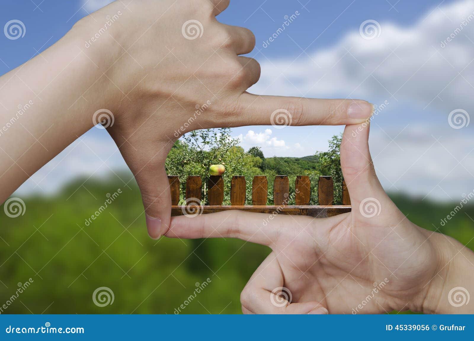 一个尖桩篱栅的视觉用苹果