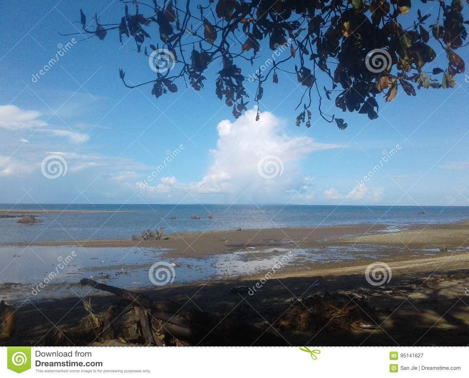 一个惊人的海滩