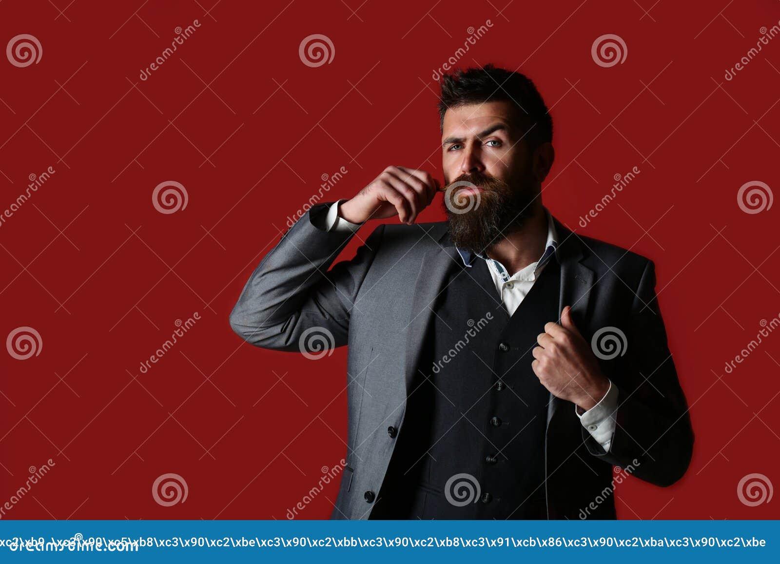 一个有胡子的行家人的演播室画象 男性胡子和髭 英俊的时髦的有胡子的人 衣服的有胡子的人和