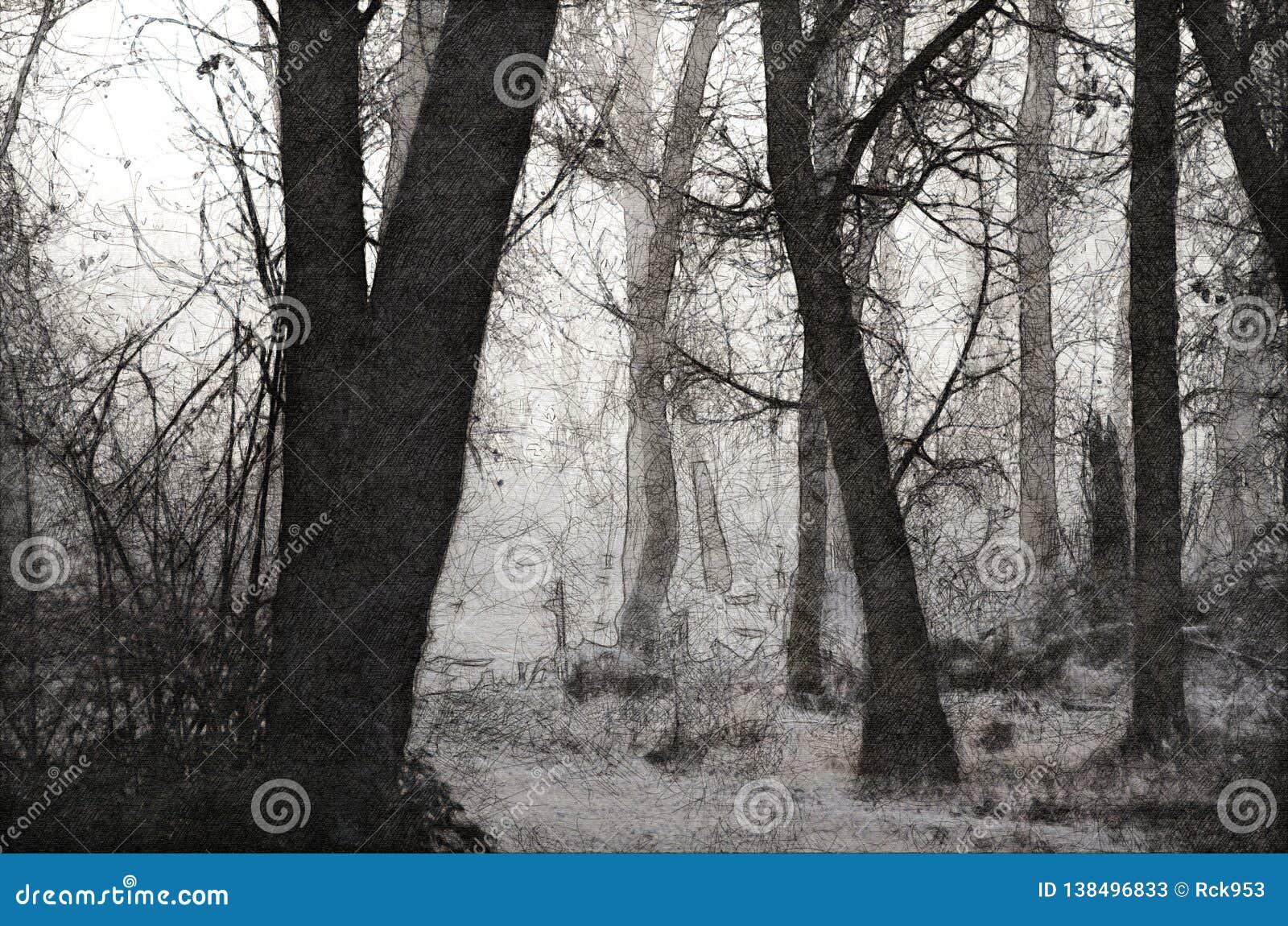 一个有薄雾的森林的剪影在一个冷的沈默早晨