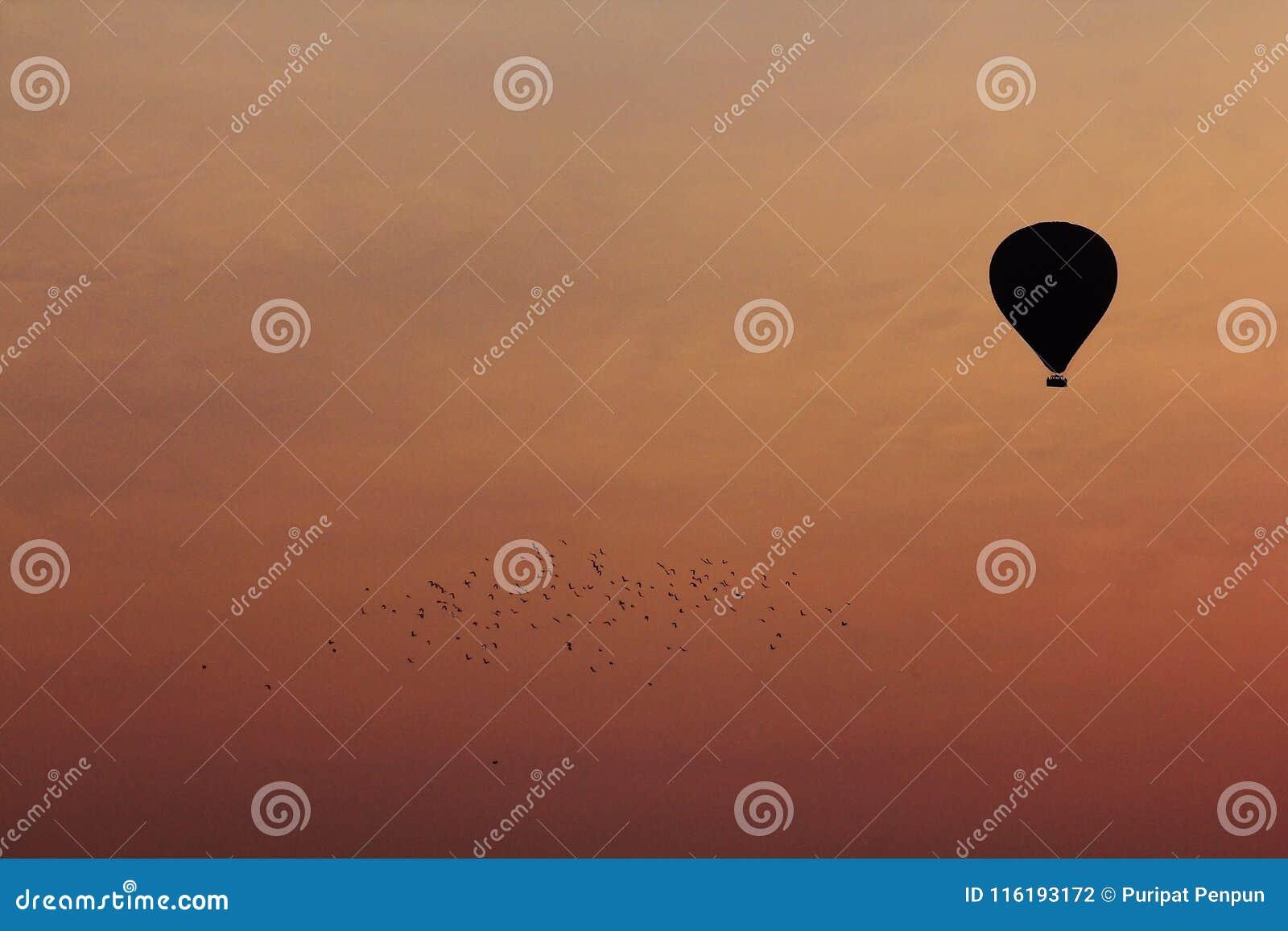 一个气球的剪影用桔子