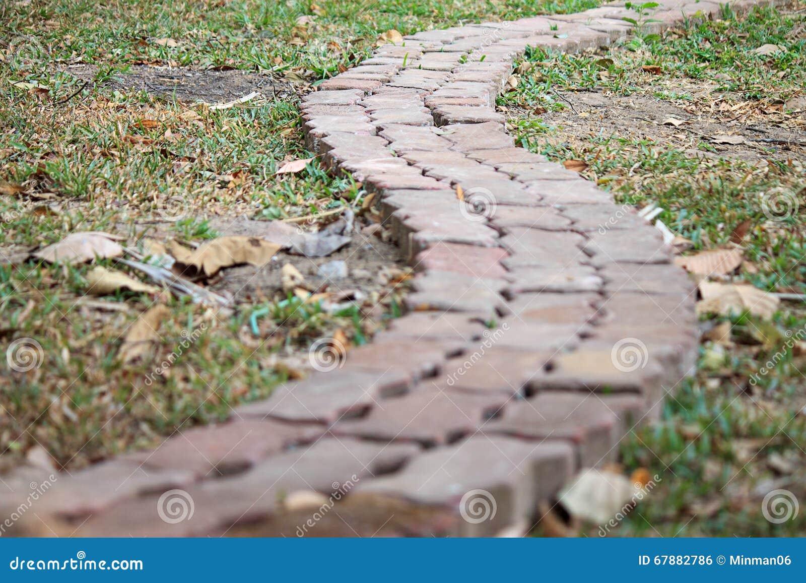 一个砖步行方式在庭院里