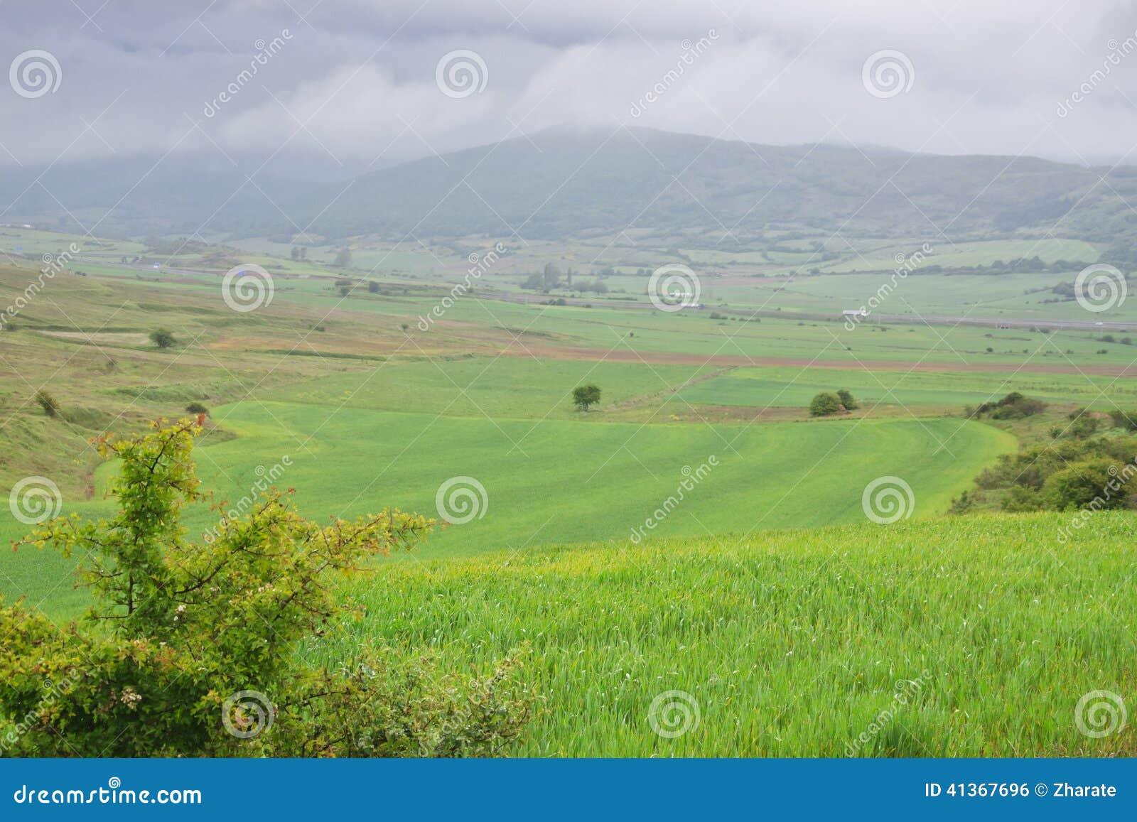 一些反弹严格晴朗那里不是的蓝色云彩日由于域重点充分的绿色横向小的移动工厂显示天空是麦子白色风