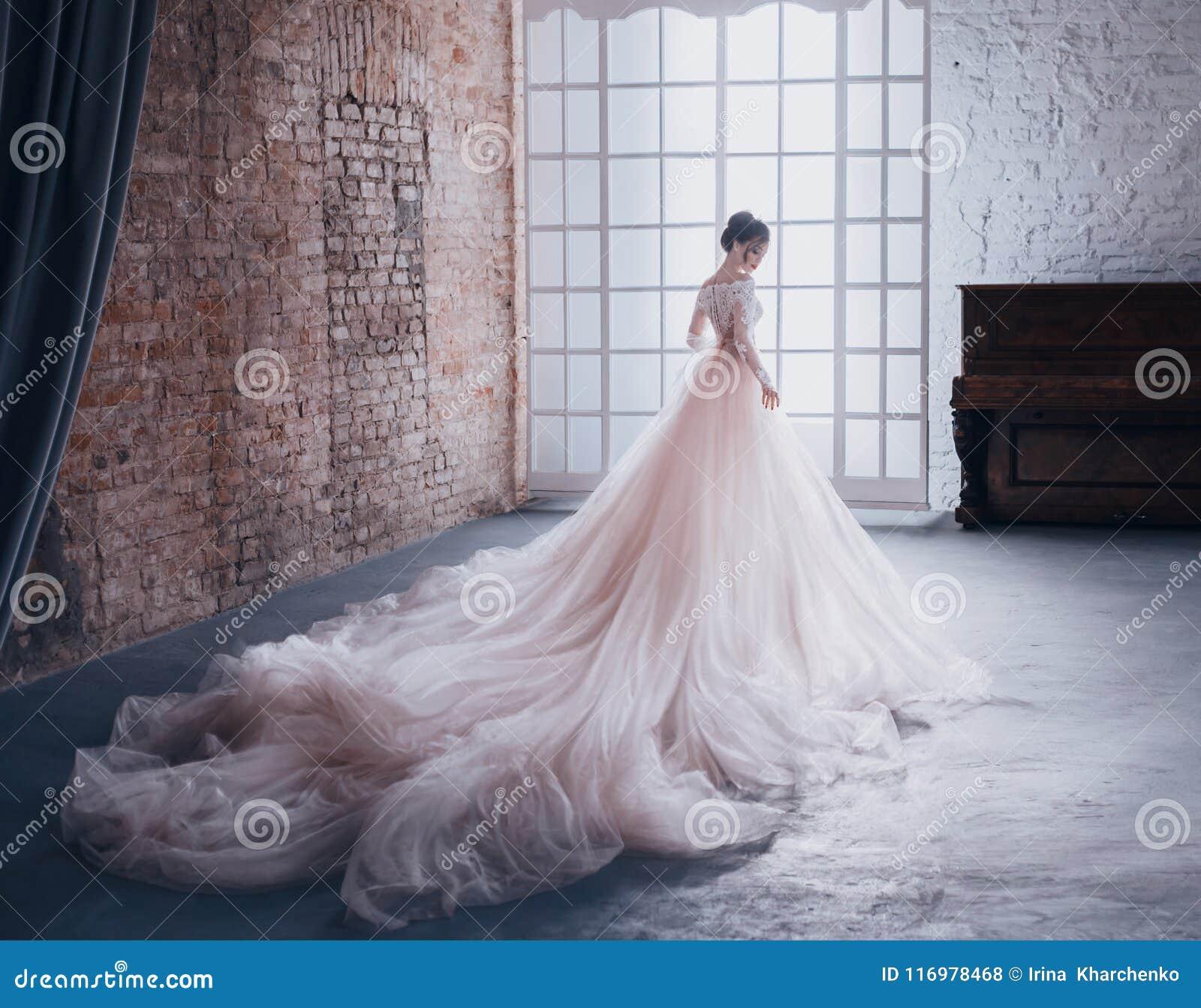 一件昂贵,豪华礼服的一位年轻公主有一列长的火车的站立与她回到照相机,反对