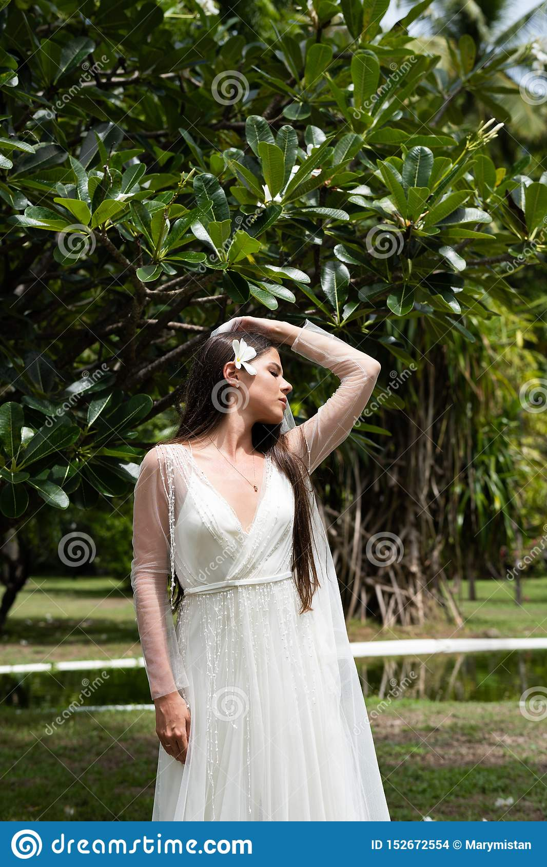 一件白色礼服的一个新娘有在她的头发的一朵异乎寻常的花的站立在一棵开花的热带树下