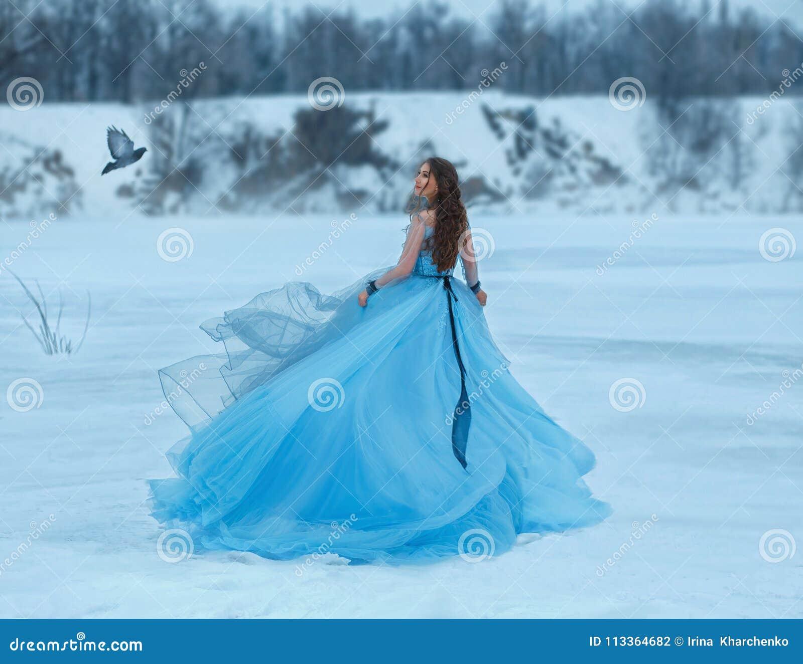 一件豪华,豪华,蓝色礼服的灰姑娘有一列壮观的火车的 女孩在用雪盖的一个冻湖走