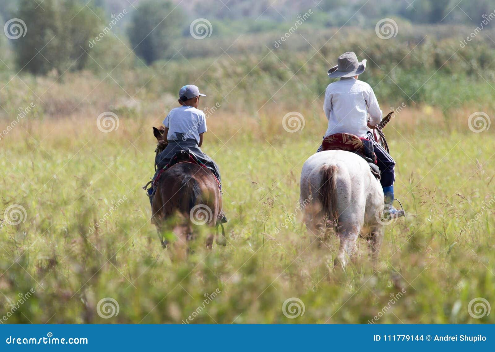 一匹马的两个男孩在自然