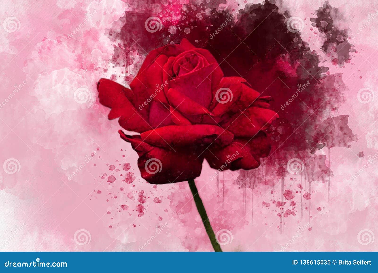 一朵充满活力的红色玫瑰色花的水彩图画 多汁植物的板材-离开仙人掌、仙人掌和柱仙人掌仙人掌 一个贺卡或婚姻的邀请的装饰元素