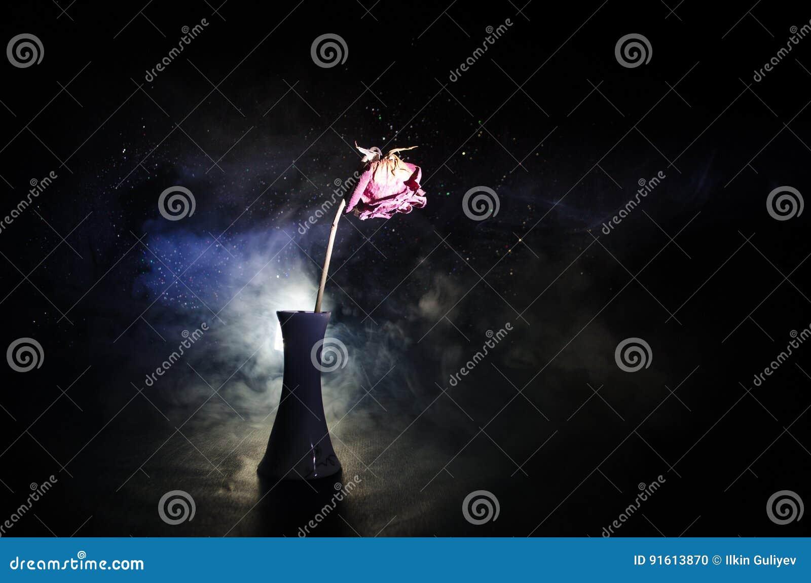 一朵枯萎的玫瑰符号化失去的爱,离婚,或者一个坏关系,死者在黑暗的背景上升了