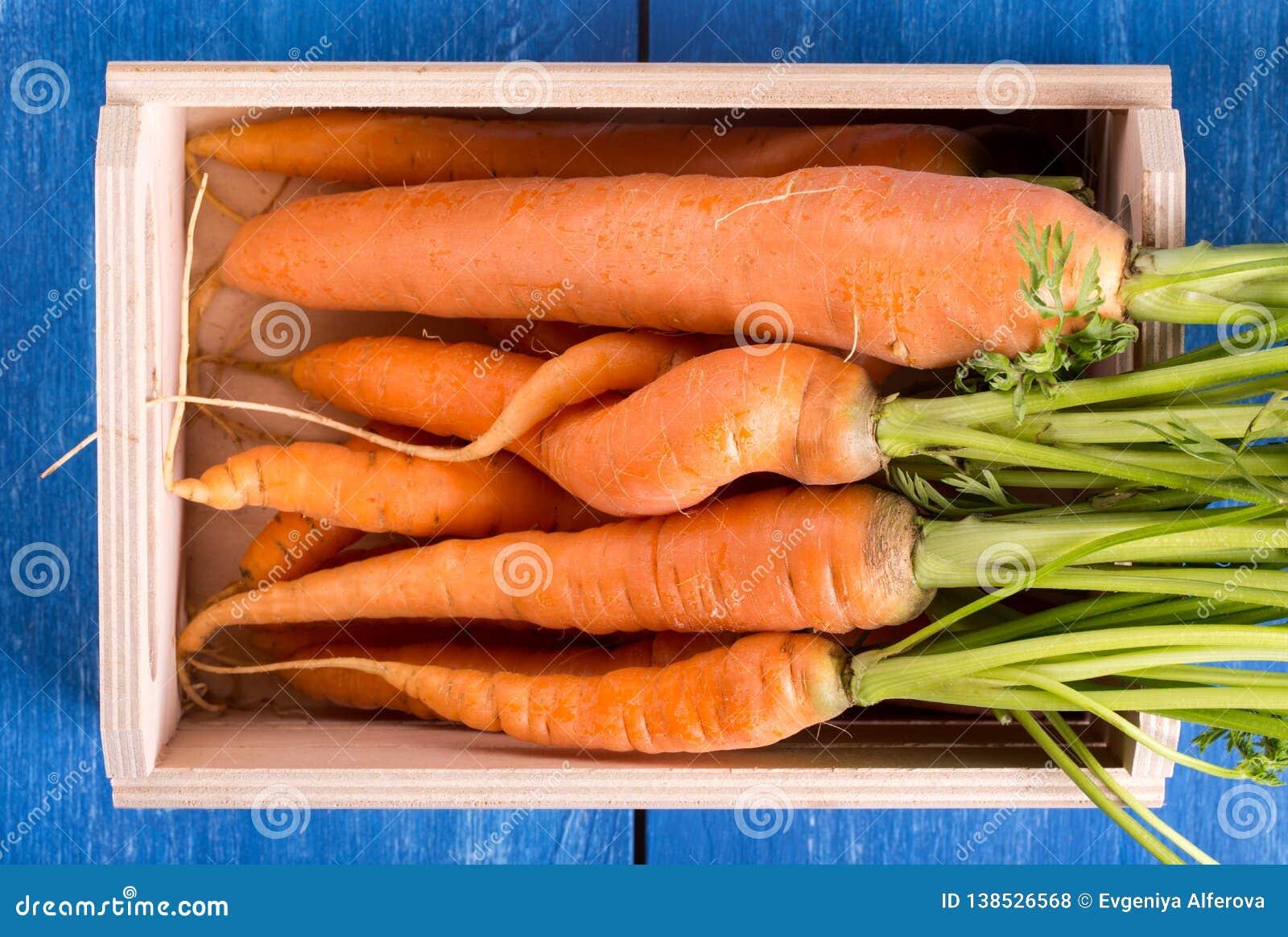 一束新鲜的红萝卜
