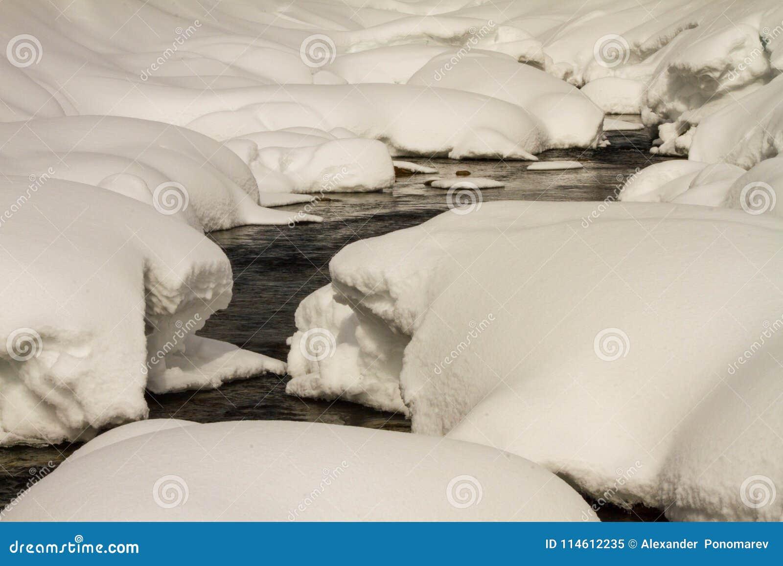 一条河在一个多雪的森林里