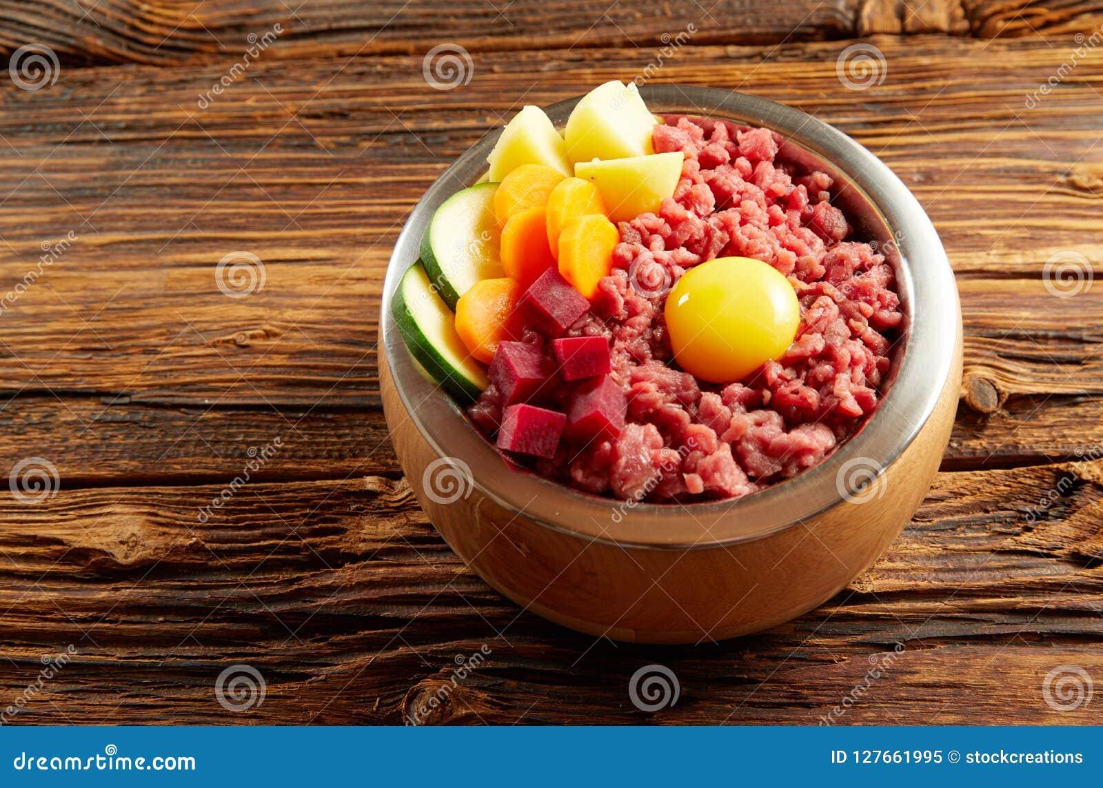 一条狗的鲜美晚餐用肉和菜