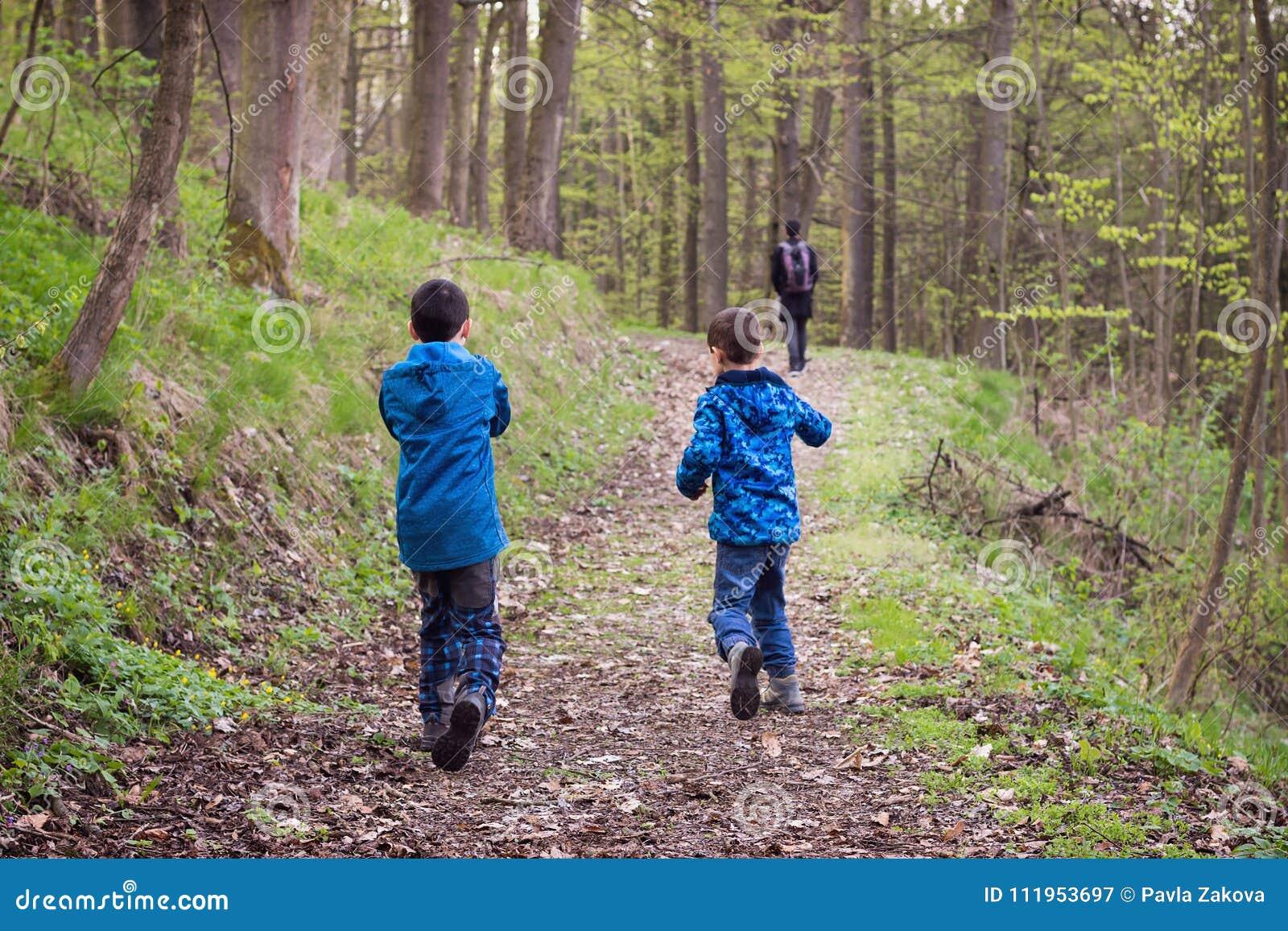一条道路的孩子在春天森林里