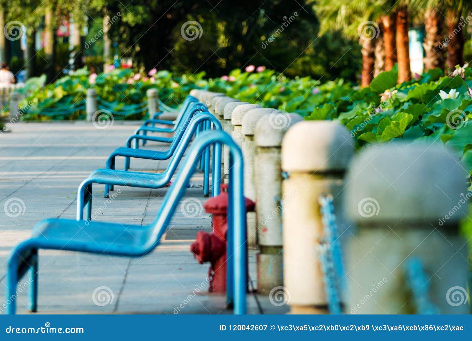一条长凳在社区公园