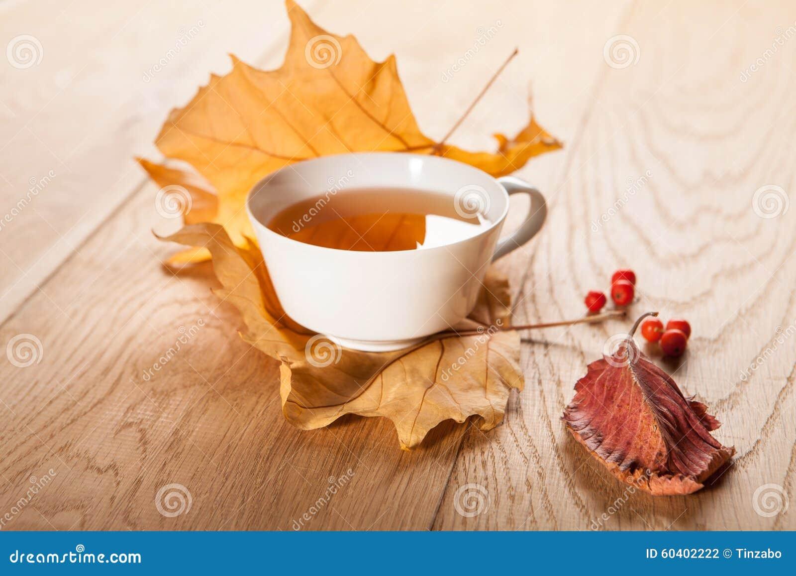 一杯茶与槭树落的秋叶的,和花揪莓果在木桌的背景的