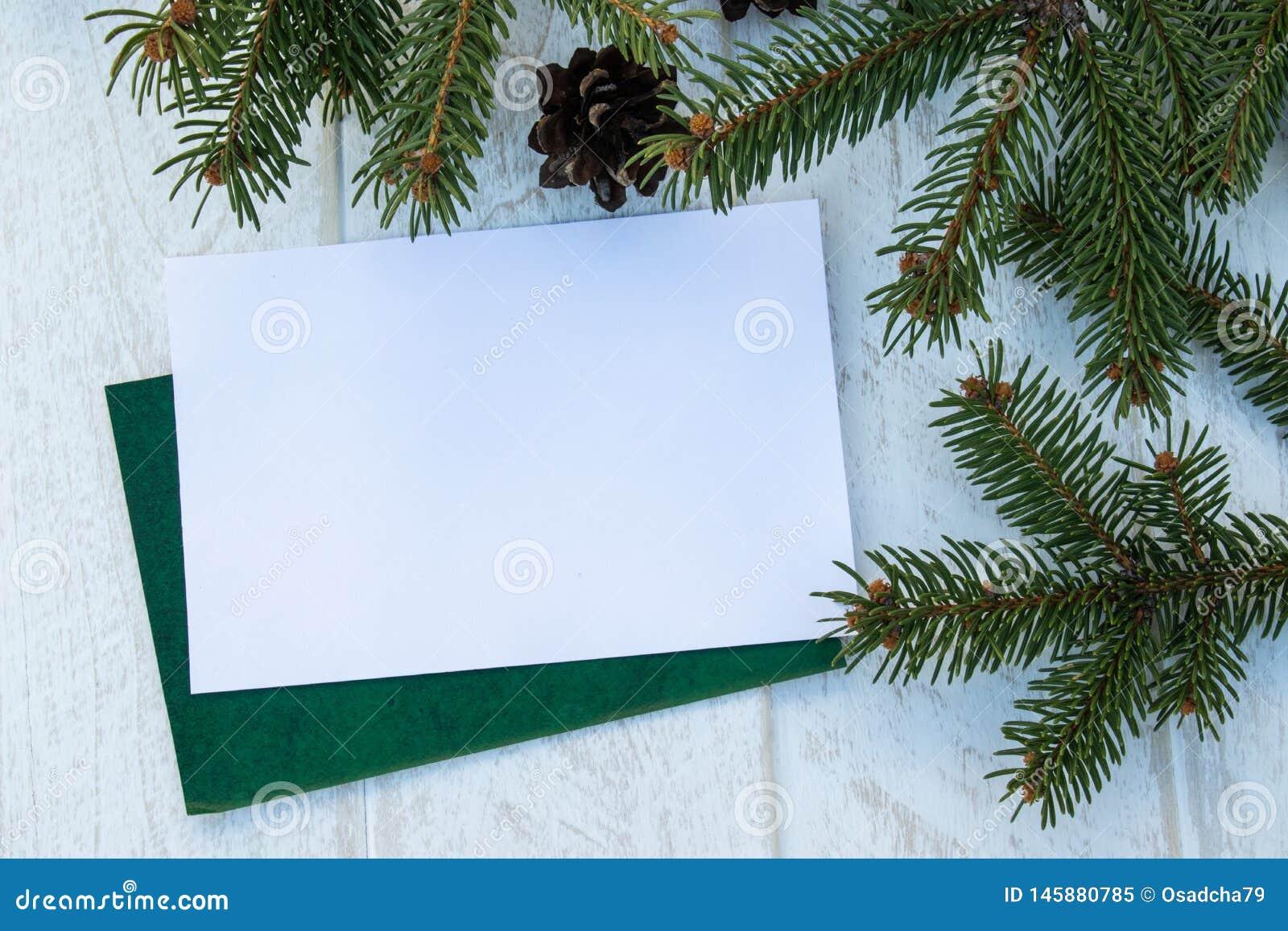 一棵圣诞树和锥体的绿色分支在白板背景 r