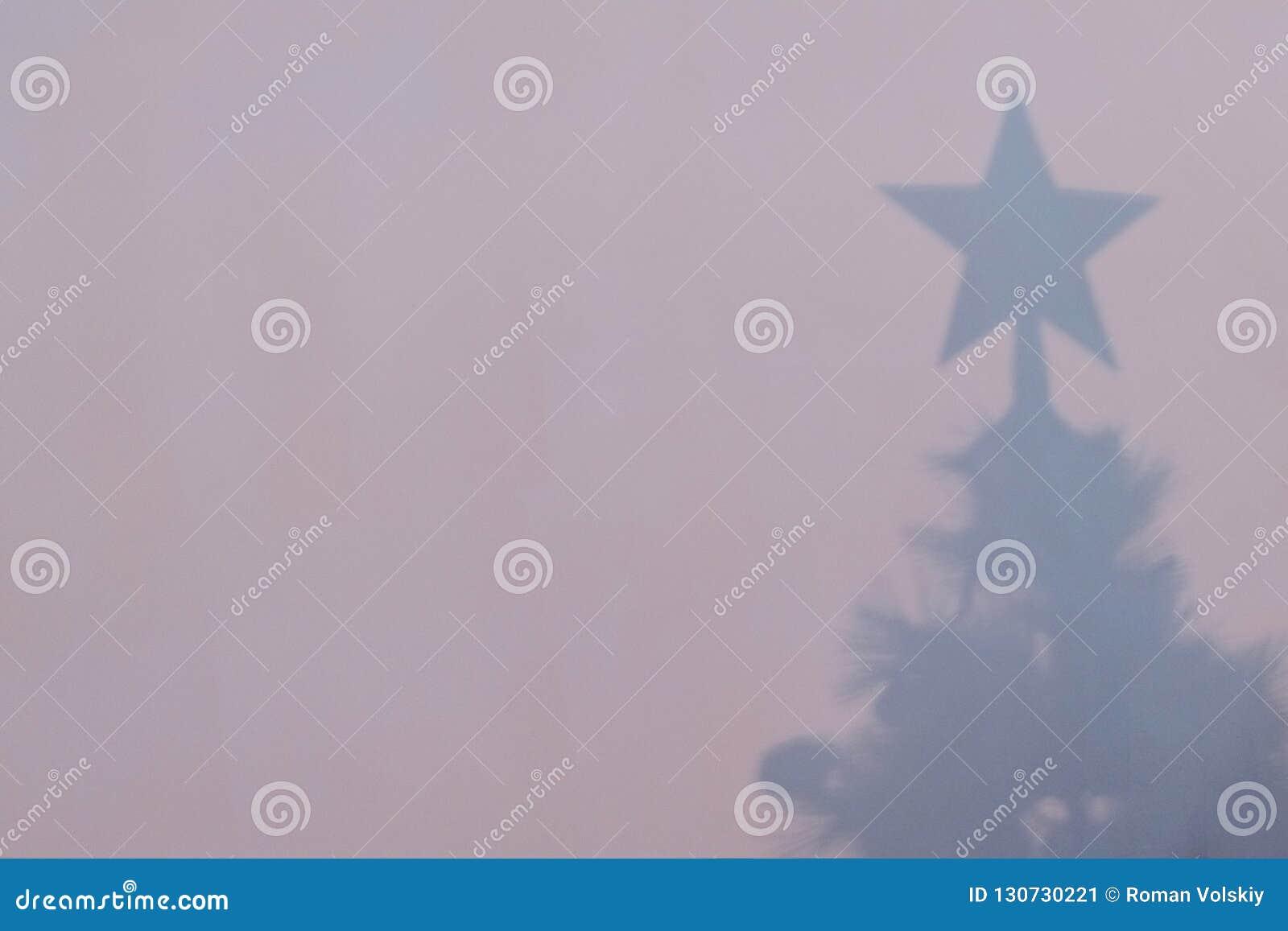 一棵新年树的剪影在桃红色墙壁上的 圣诞树的阴影在框架的右边 Copyspace