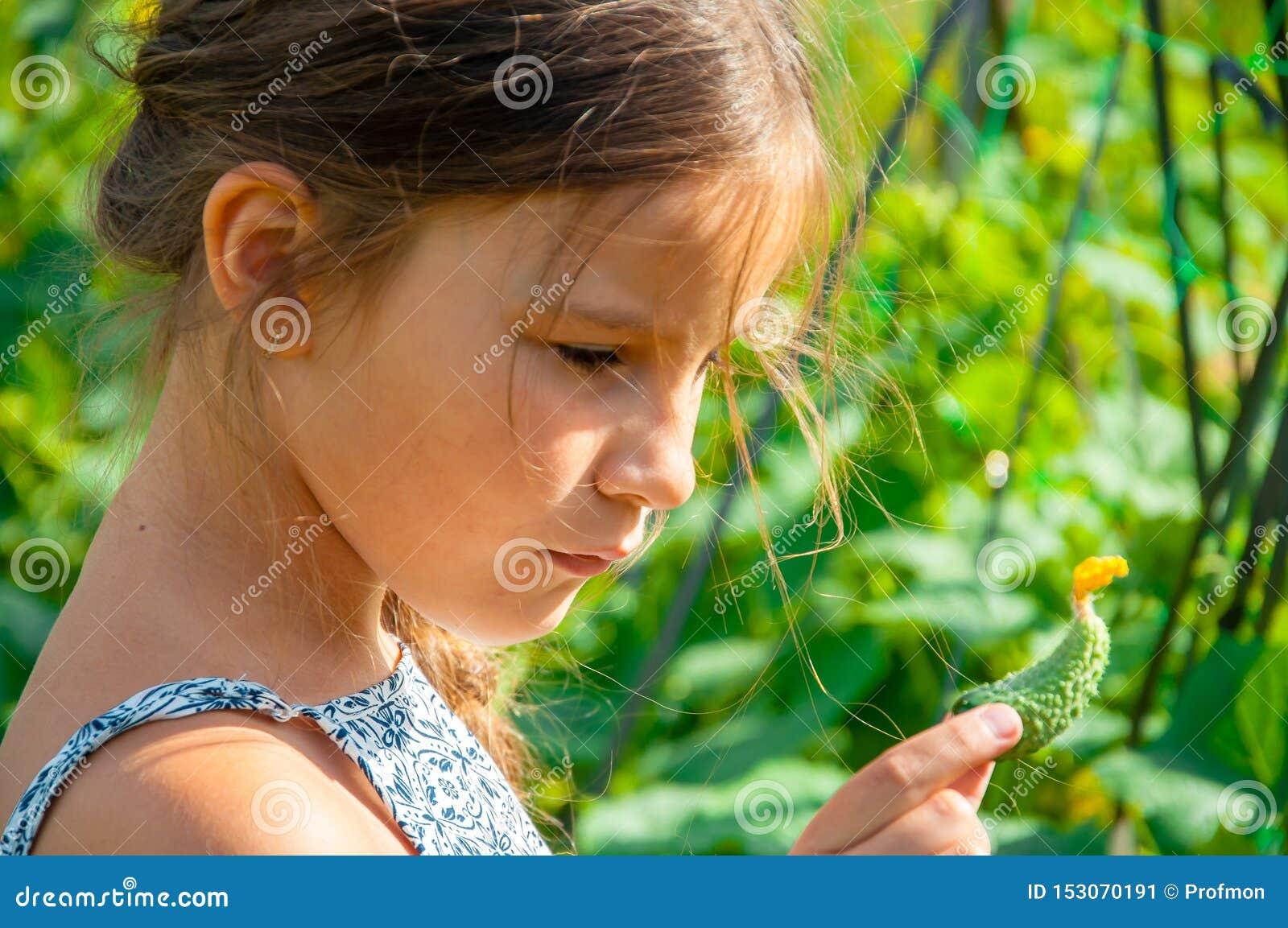 一点有一条长的辫子的逗人喜爱的女孩,吃从庭院采的黄瓜