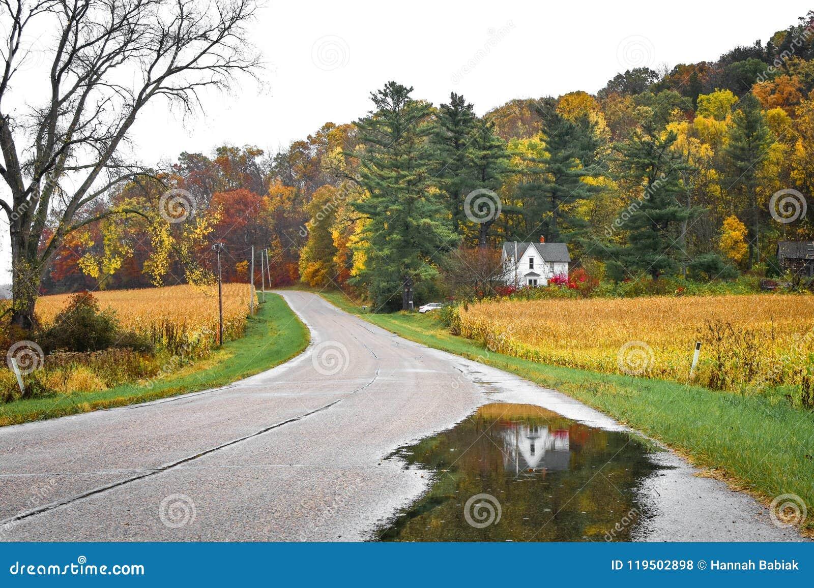 一点白宫,秋天,反射在池塘