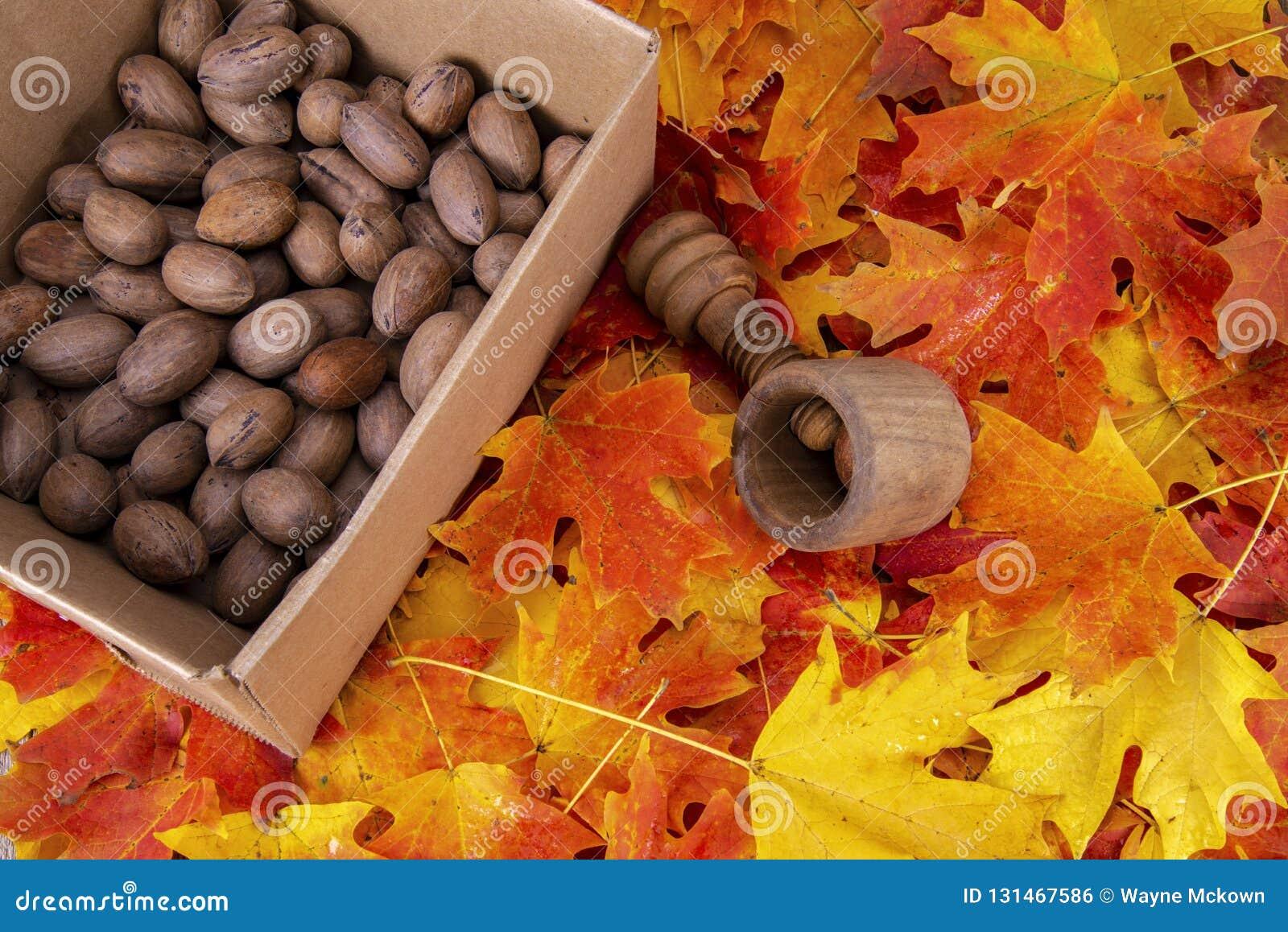 一箱胡桃,古色古香的木坚果薄脆饼干