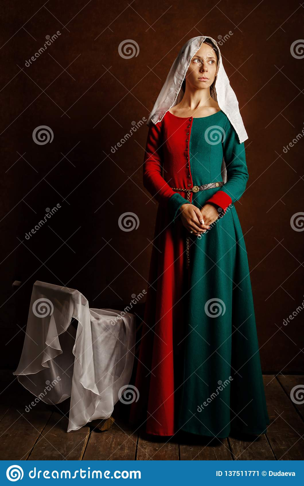 一美女的画象中世纪礼服的在红色和绿色在棕色背景