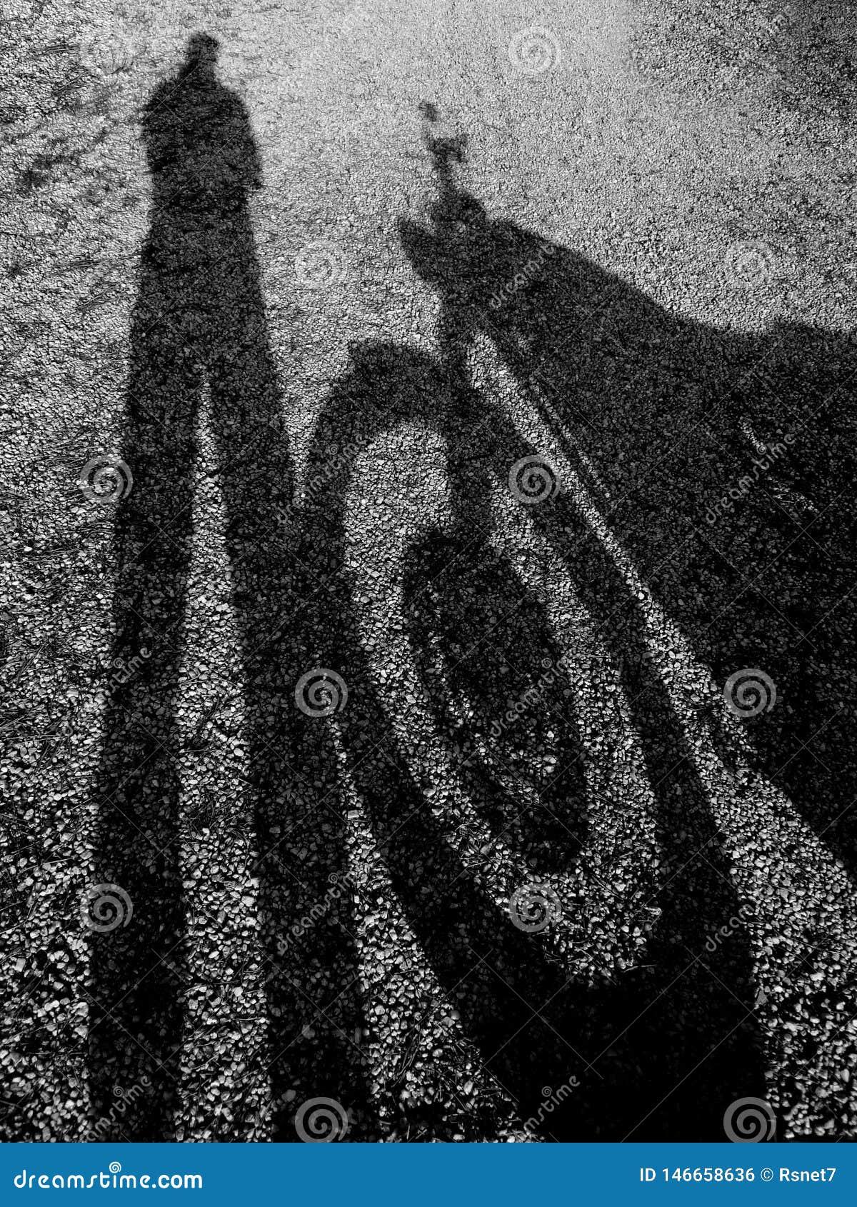 一辆摩托车的阴影有司机的