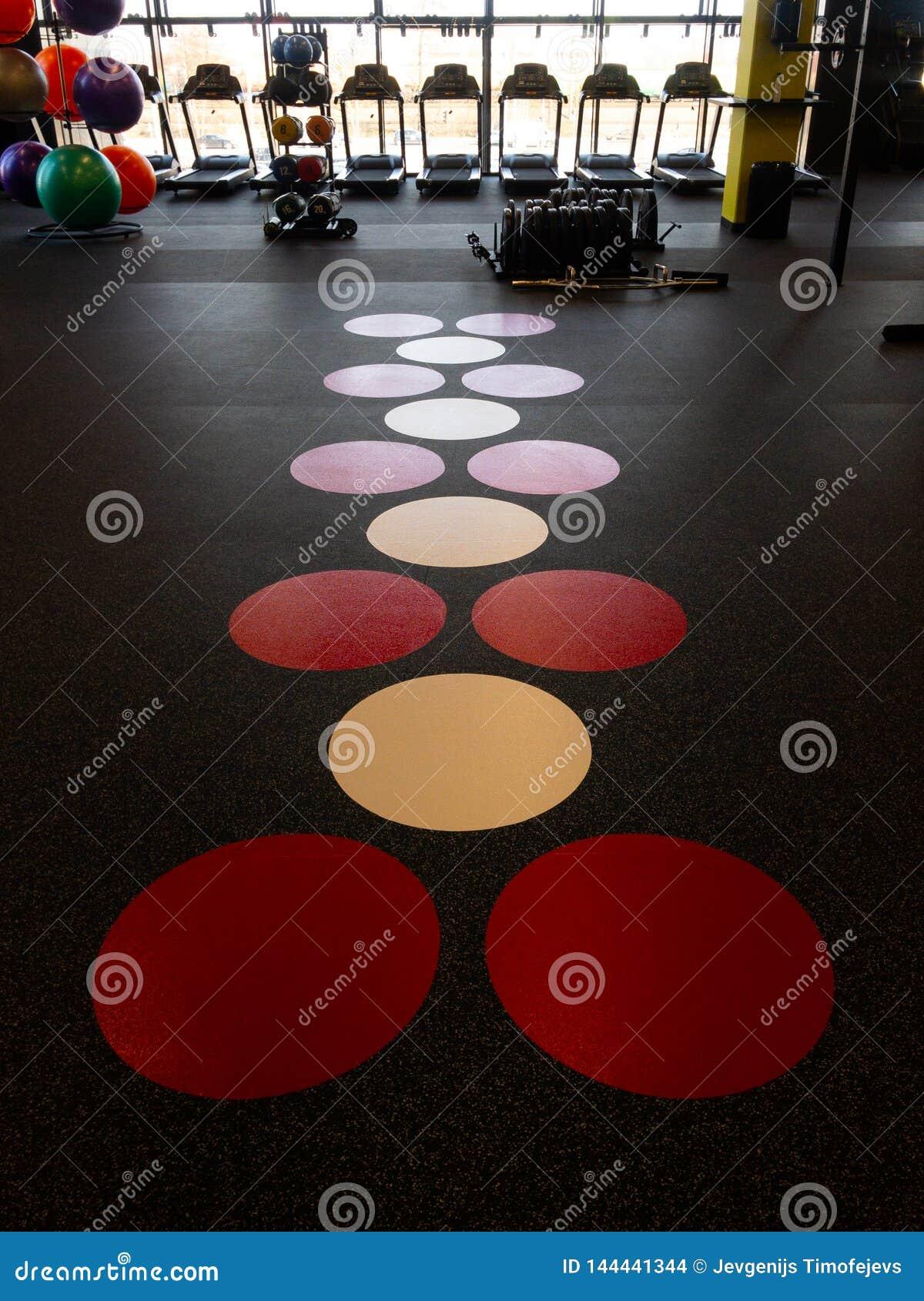 一间健身房的地板在一家新的体育俱乐部的