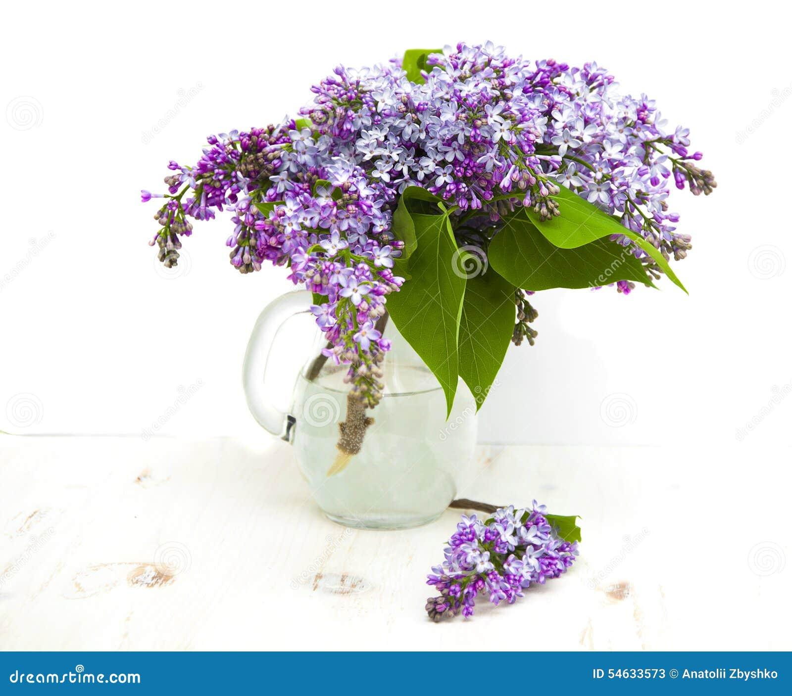 在一个花束的美丽的背景白色在花瓶木丁香.丁香花唐磊演唱网络歌曲图片
