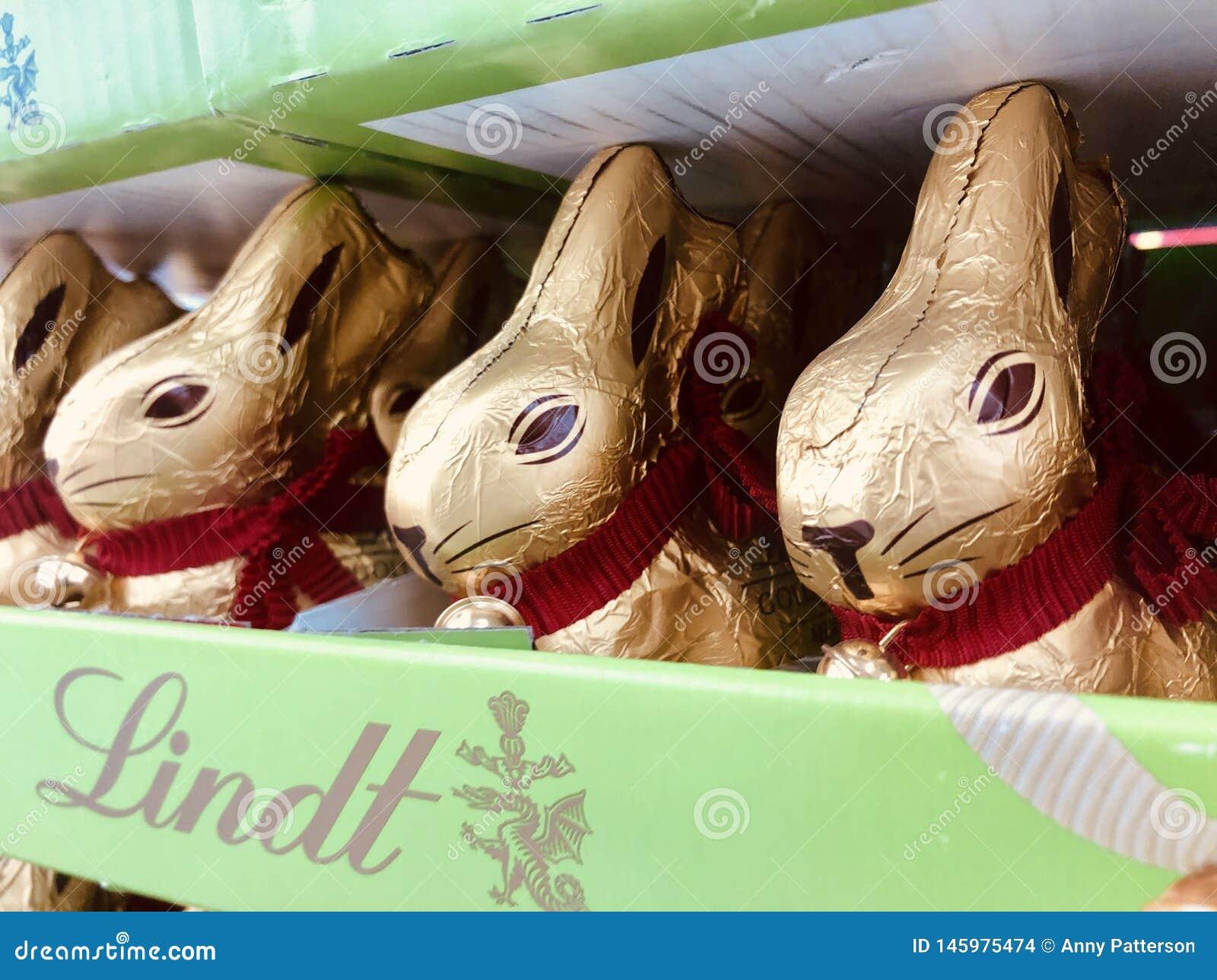 三个小的兔宝宝