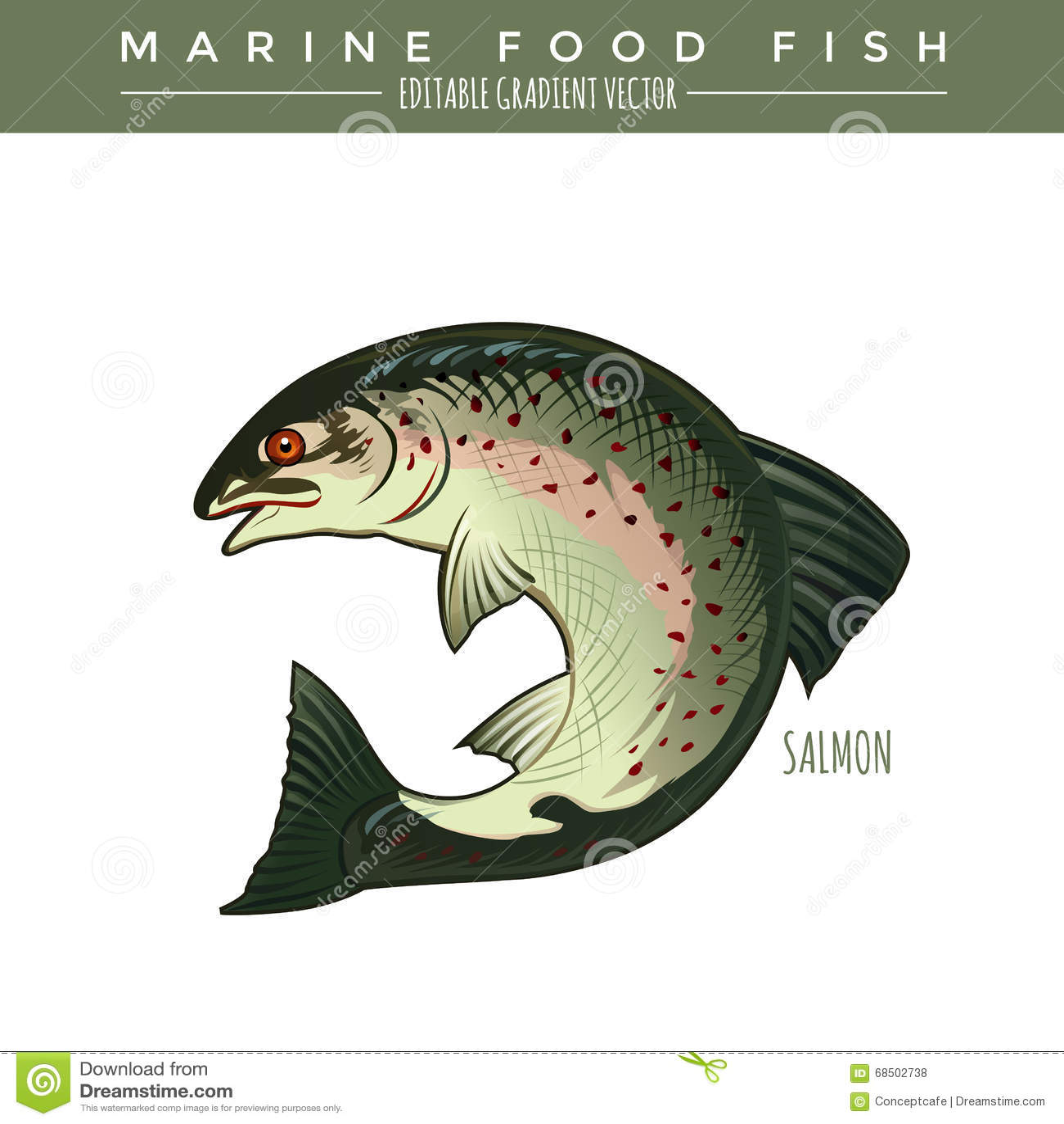 三文鱼 海洋食用鱼