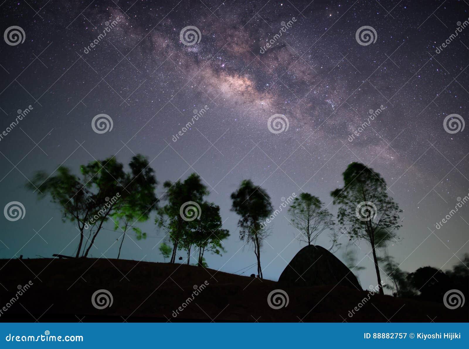 上升与树和帐篷的银河