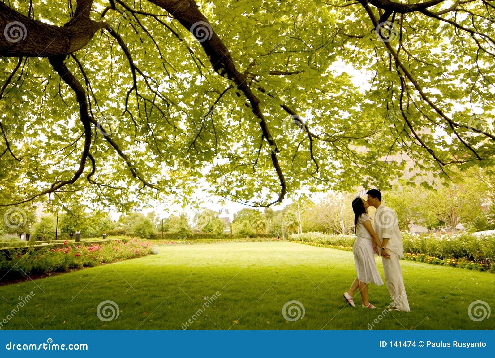 下亲吻结构树