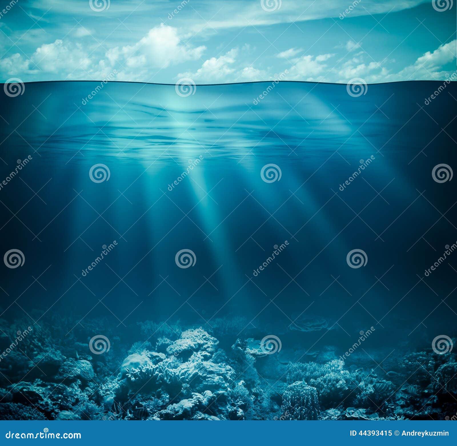 水下的珊瑚礁海底和水表面