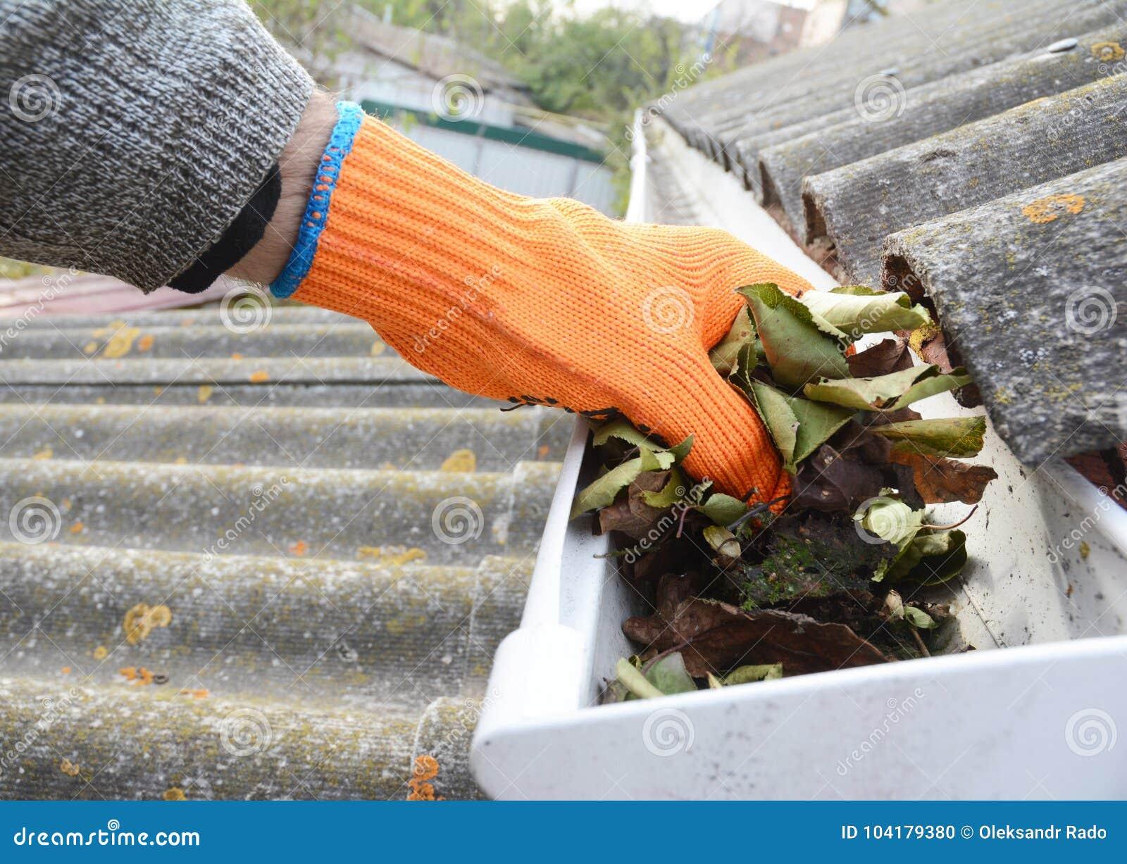 下雨从叶子的天沟清洁在秋天用手 天沟清洁 屋顶天沟清洁技巧