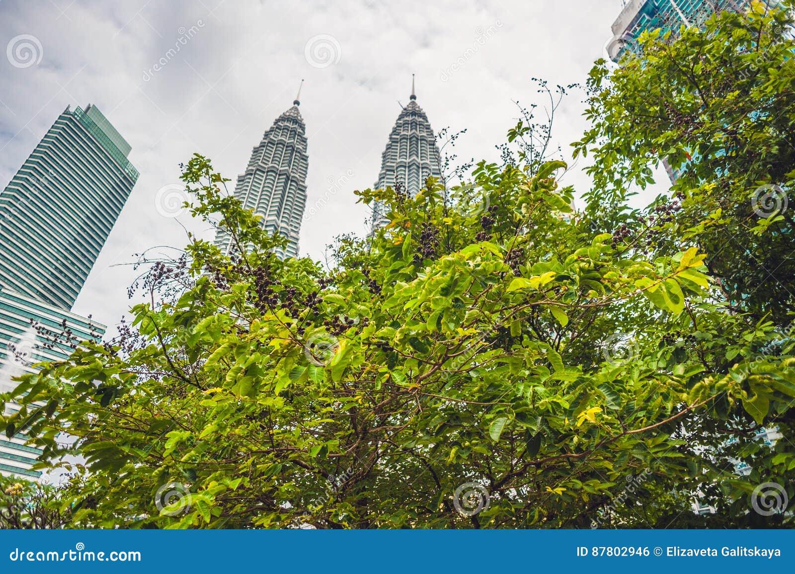 下面看到双子楼在吉隆坡,马来西亚