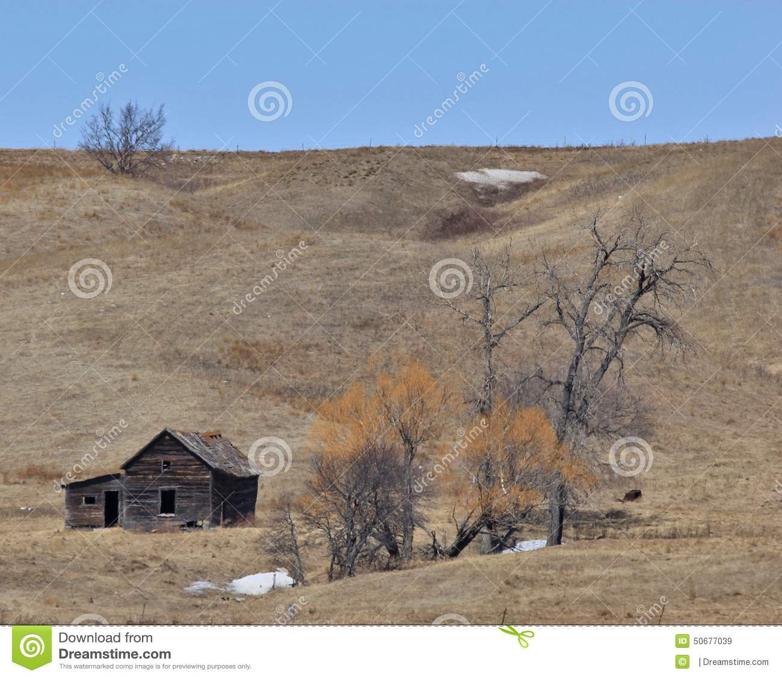 Download 不再家 库存图片. 图片 包括有 放弃了, 农场, 北部, 长期, 达可它 - 50677039