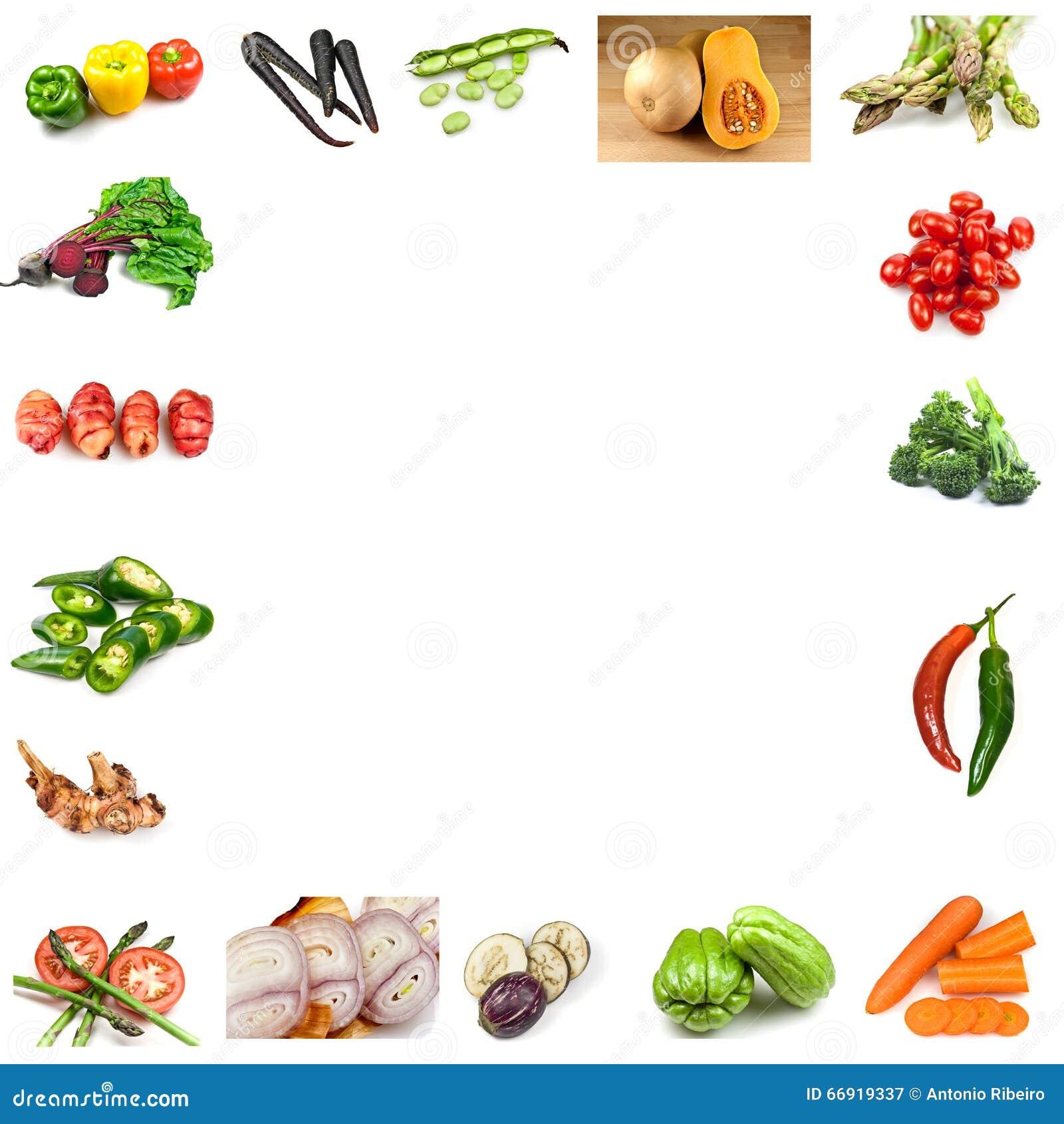 不同的蔬菜拼贴画