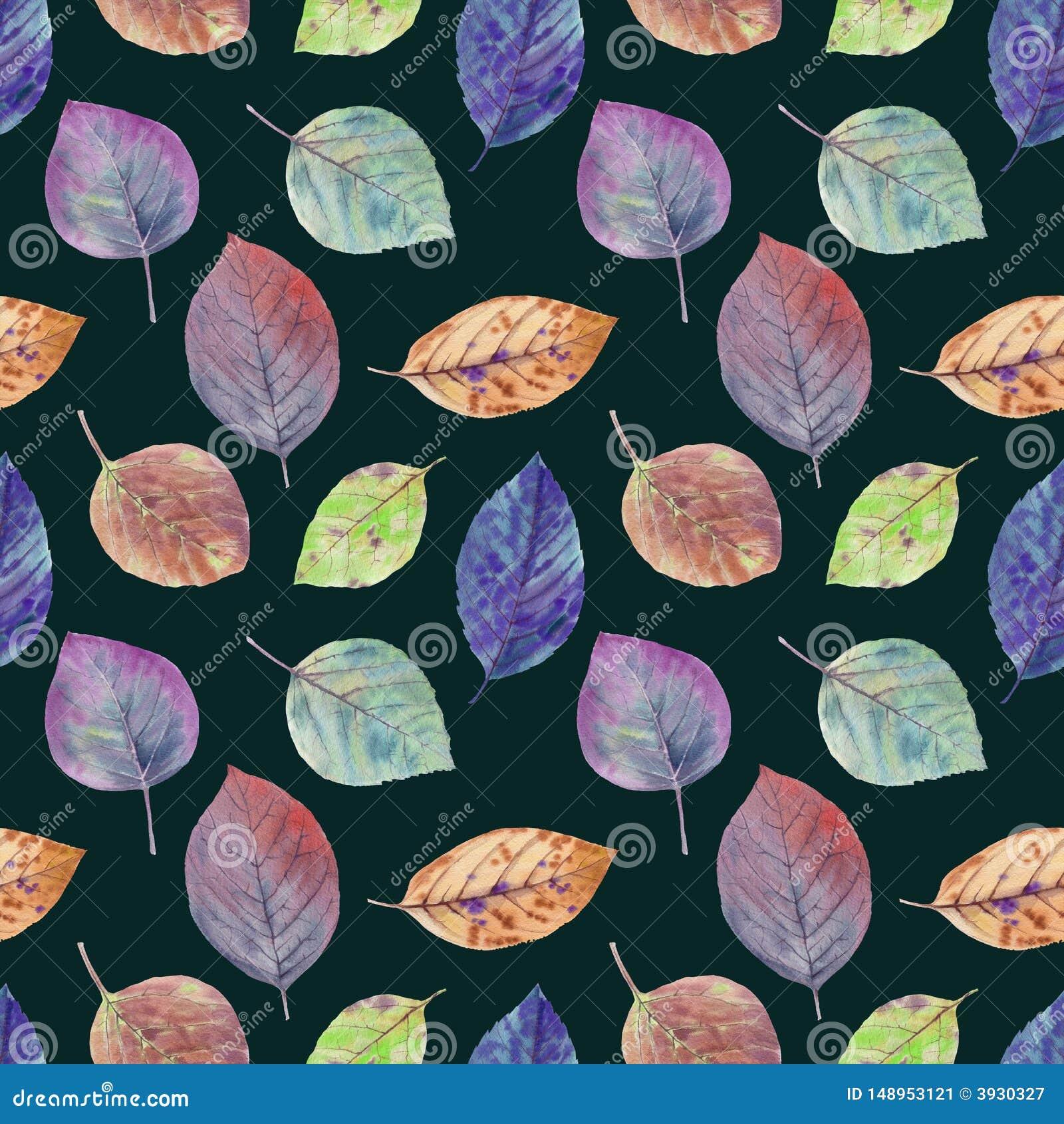 不同颜色拉长的水彩秋叶