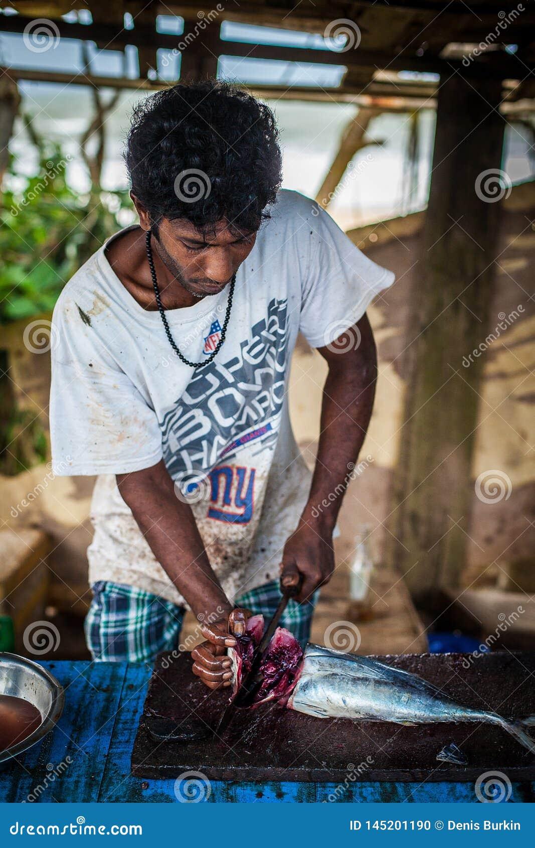 不熟悉的与一把大刀子的年轻人宰割的鱼 卑鄙的勾当 努力工人 ?? 拿着鱼的屠户