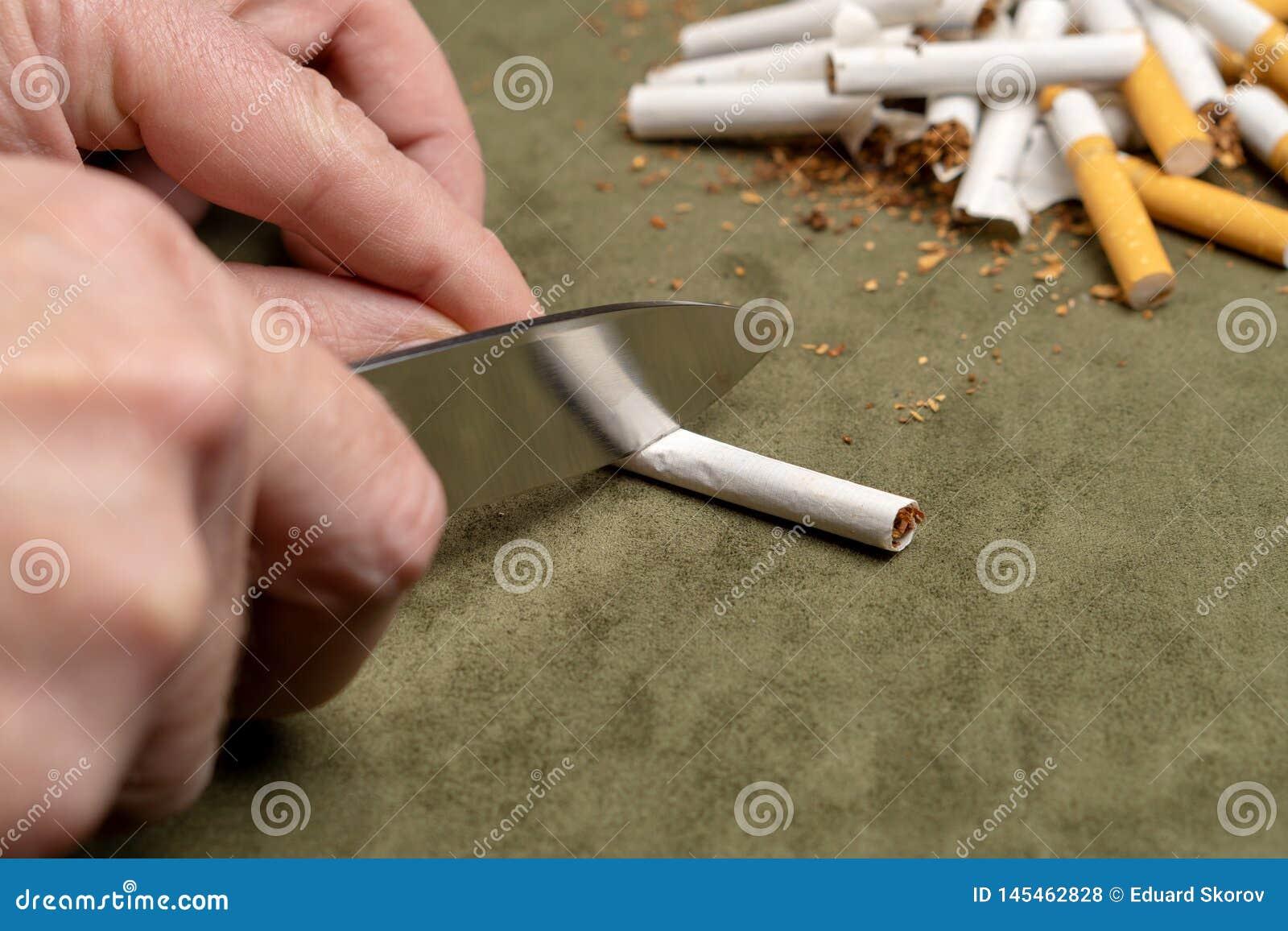 与一个恶习战斗 一个人切开与一把刀子的一根香烟在堆的背景残破的香烟