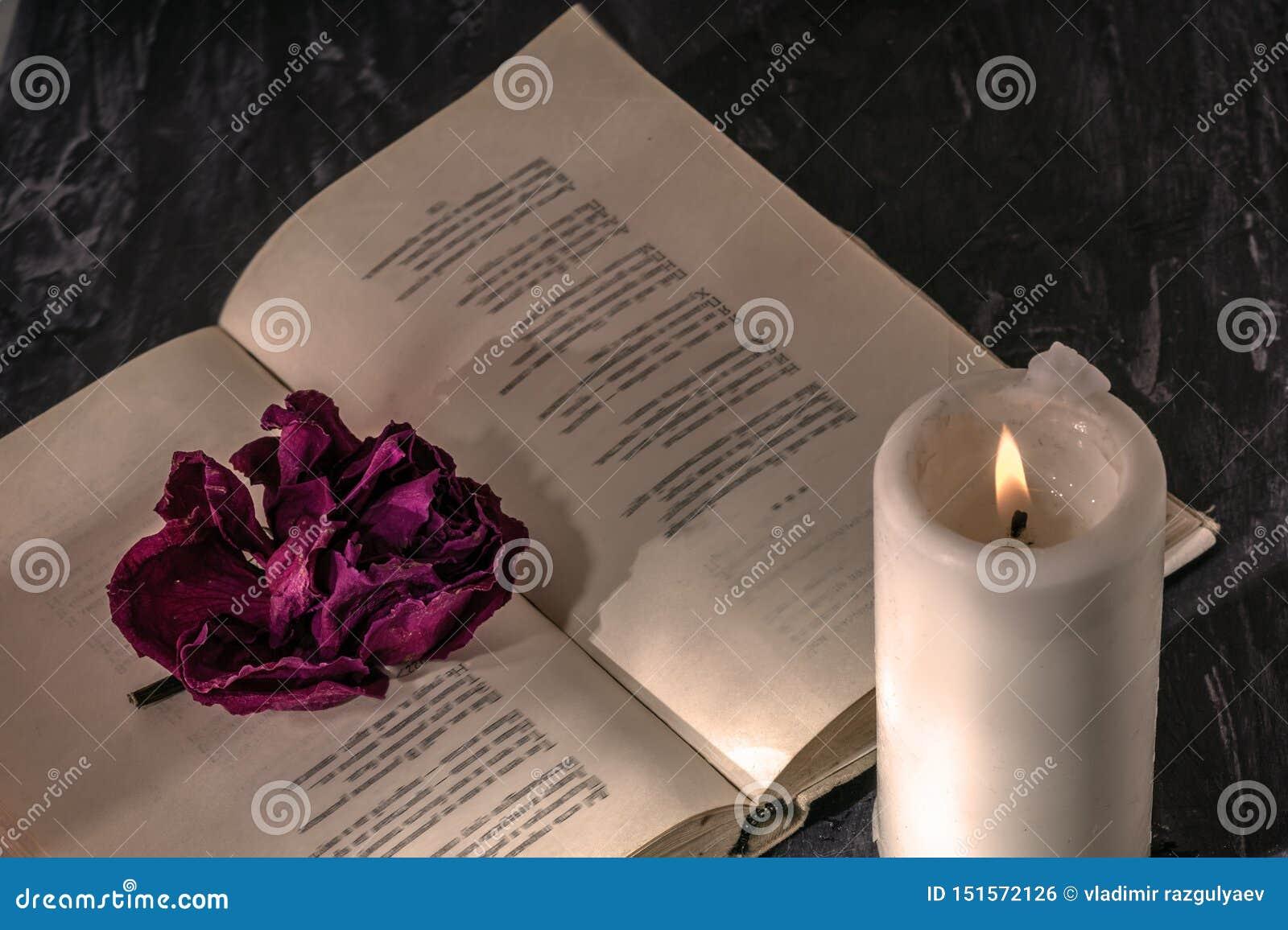与一个蜡烛的一本开放书 在页是干玫瑰的芽