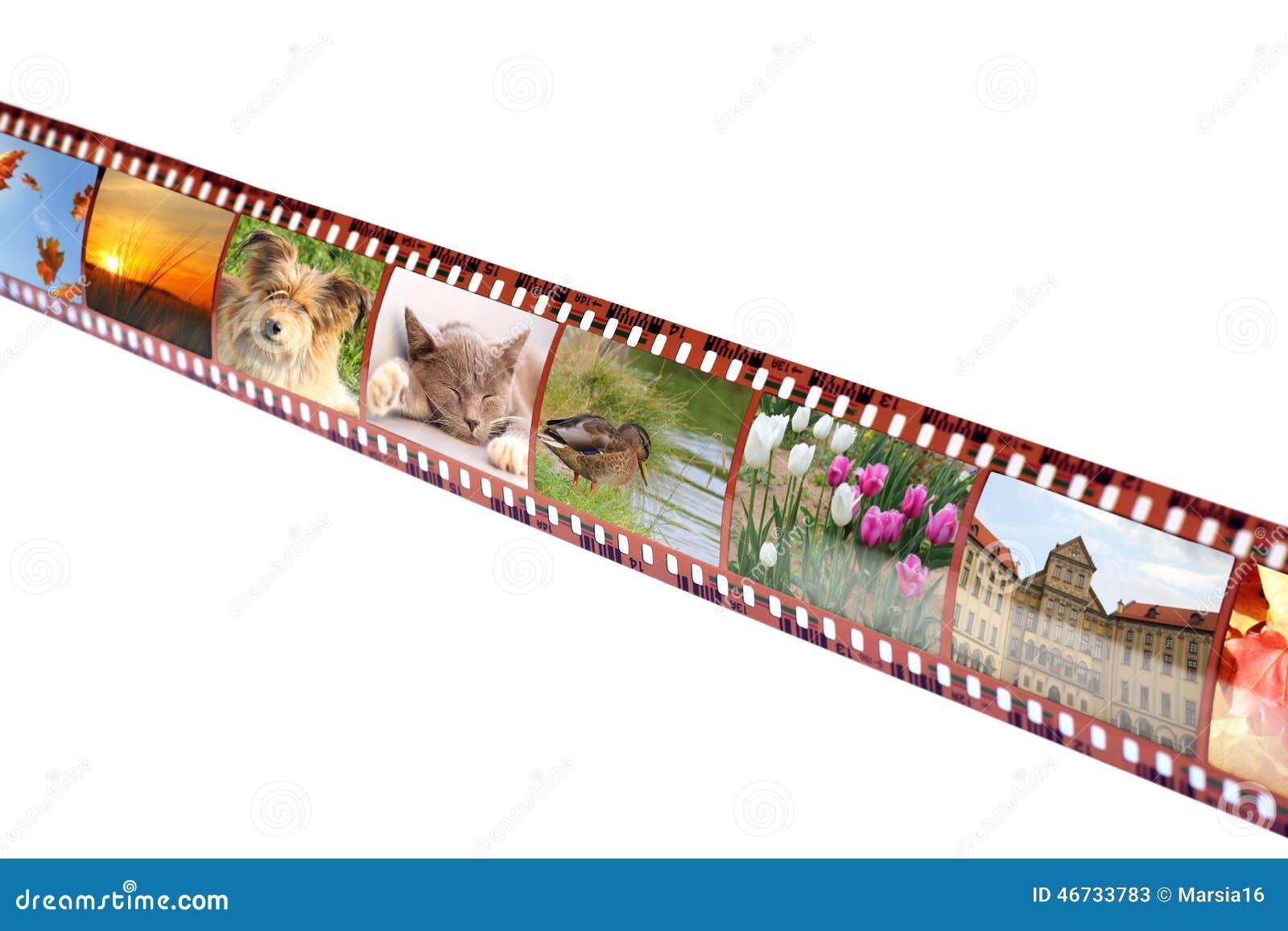 与五颜六色的充满活力的照片的影片小条