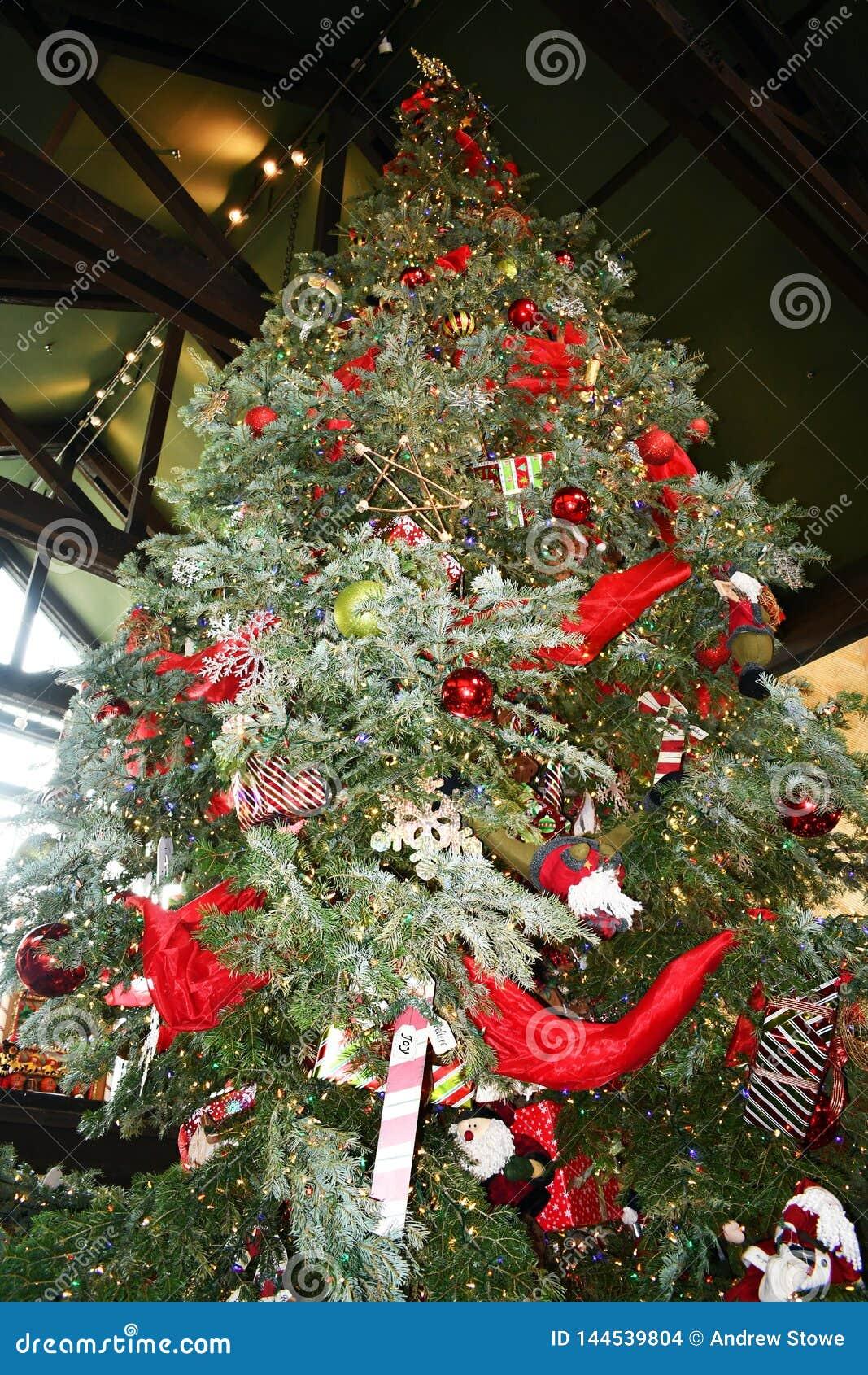 与光的巨大的圣诞树