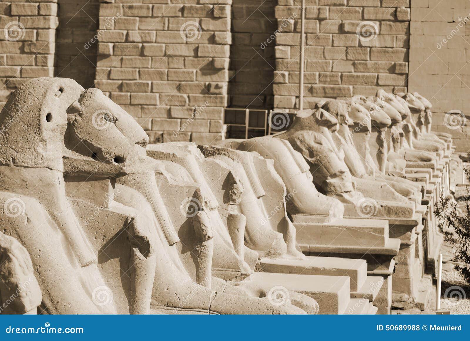 Download 与公羊头的胡同摇摆 库存照片. 图片 包括有 胡同, 拱道, 埃及, 女神, 历史记录, 坟墓, 文化, 平均数 - 50689988