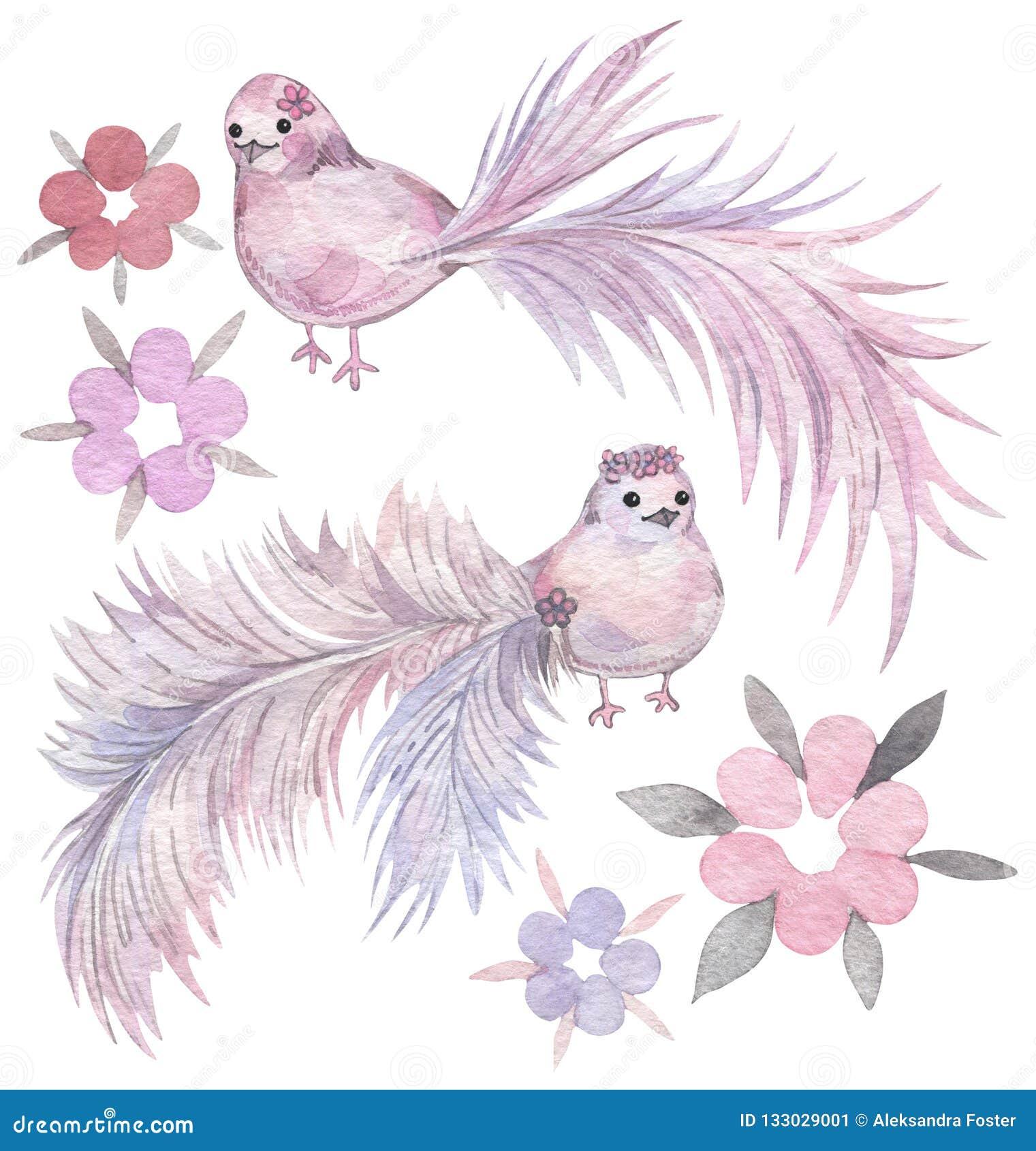 与冷淡的尾巴和花的动画片鸟 手拉的水彩集合
