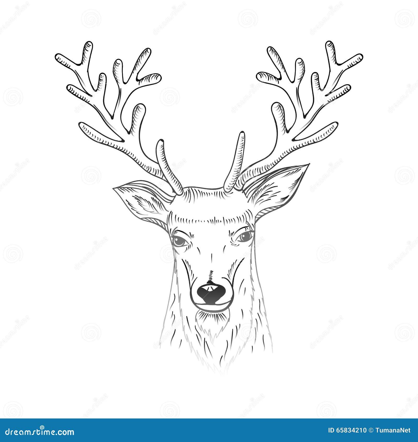 与剪影鹿的圣诞节和新年手拉的字法贺卡朝向图片