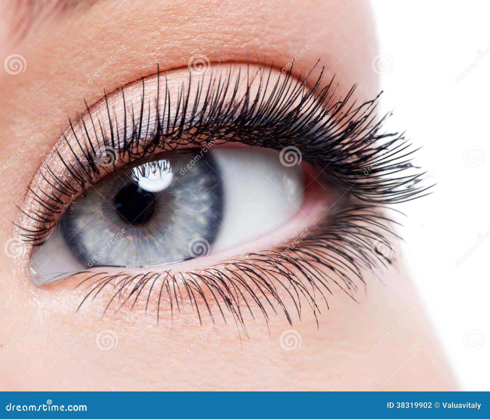 与卷毛长的假睫毛的秀丽女性眼睛