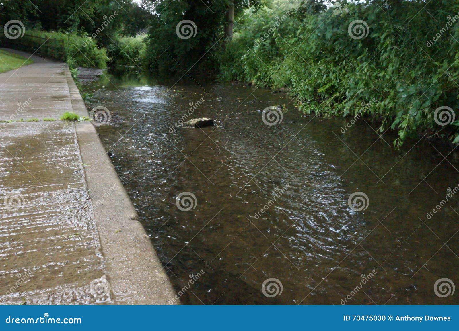 与反射的流动的小河从边缘