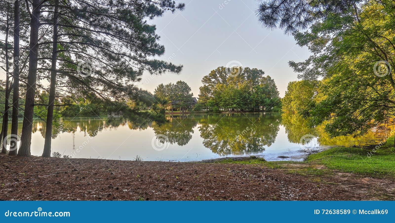 与反射的湖边视图