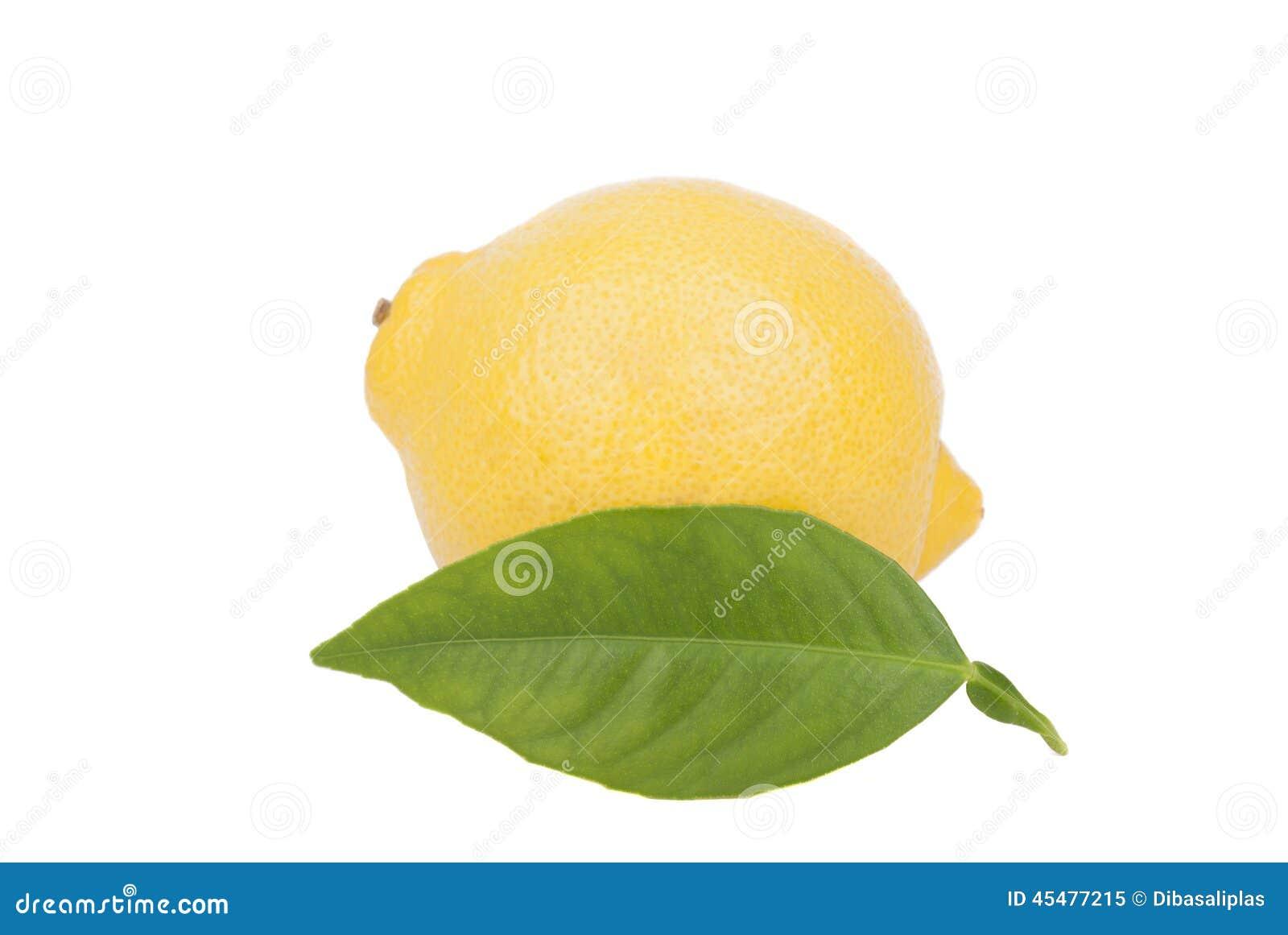 与叶子的柠檬